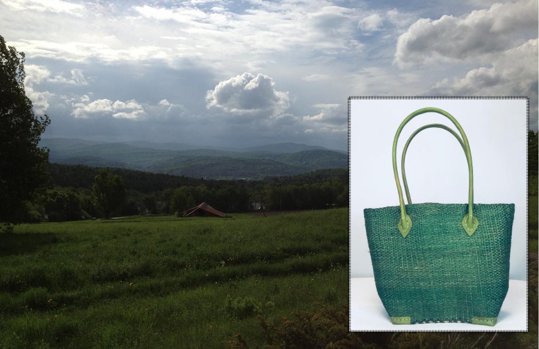 Carol S Miller Sun Bags 3-2-1816.jpg