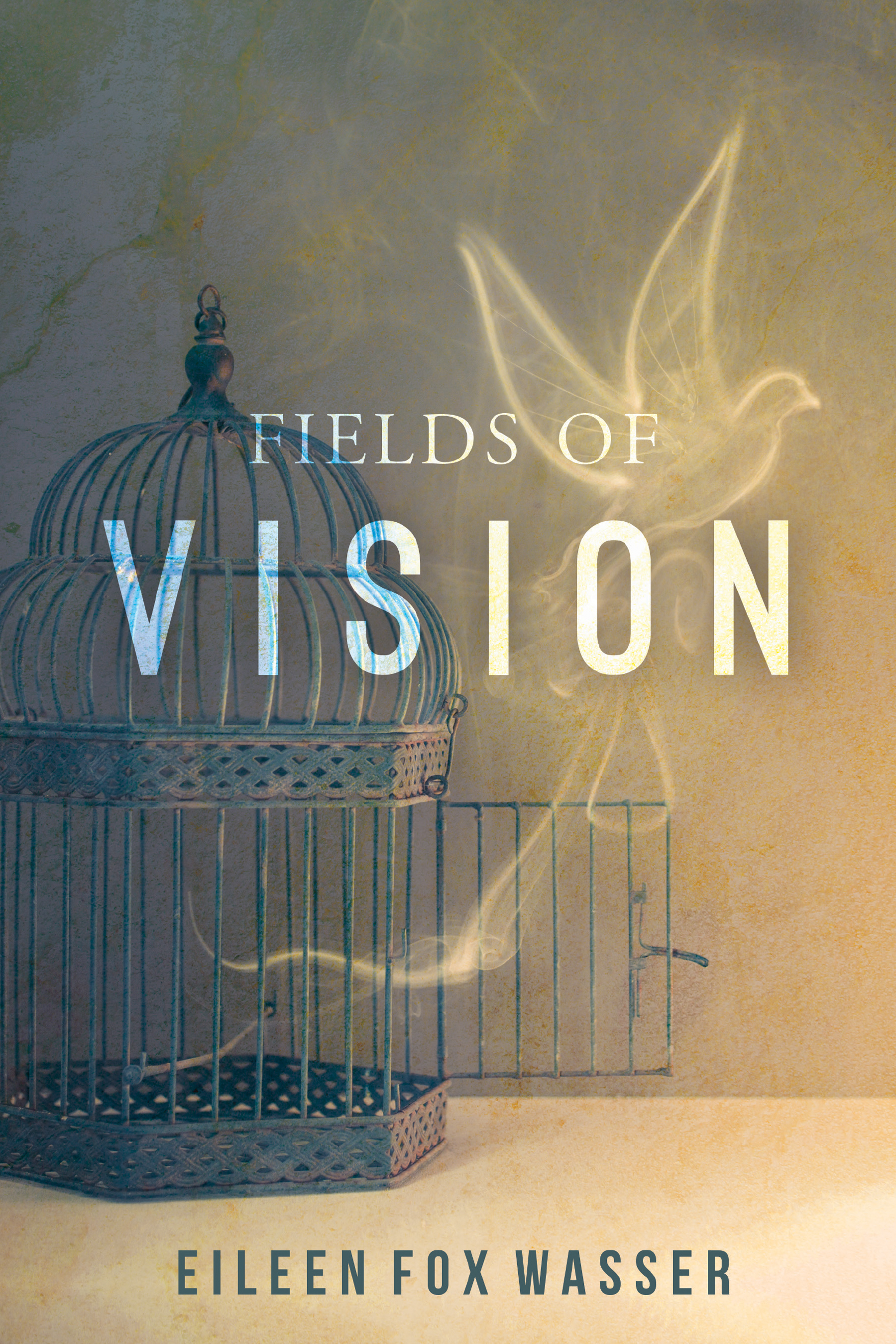Fields of Vision.jpg