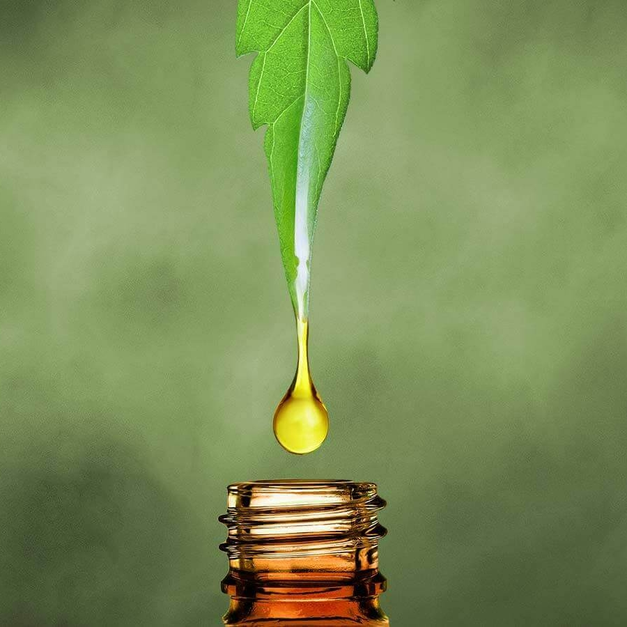 cheap-cbd-oil-prices-guide-56818.jpg