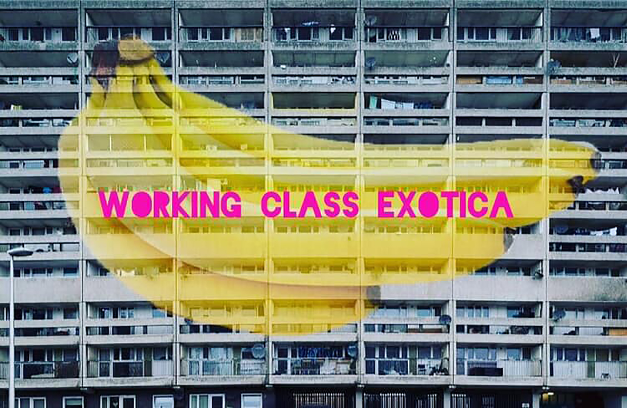 WorkingClassExotica_01_Credit Heather Marshall Creative Electric.jpg