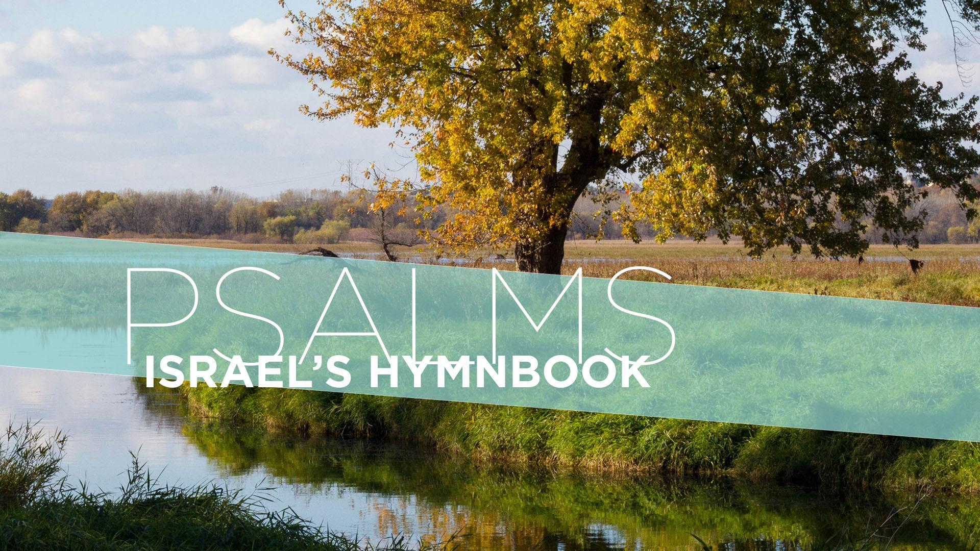 Psalms Series_Slide5.jpg