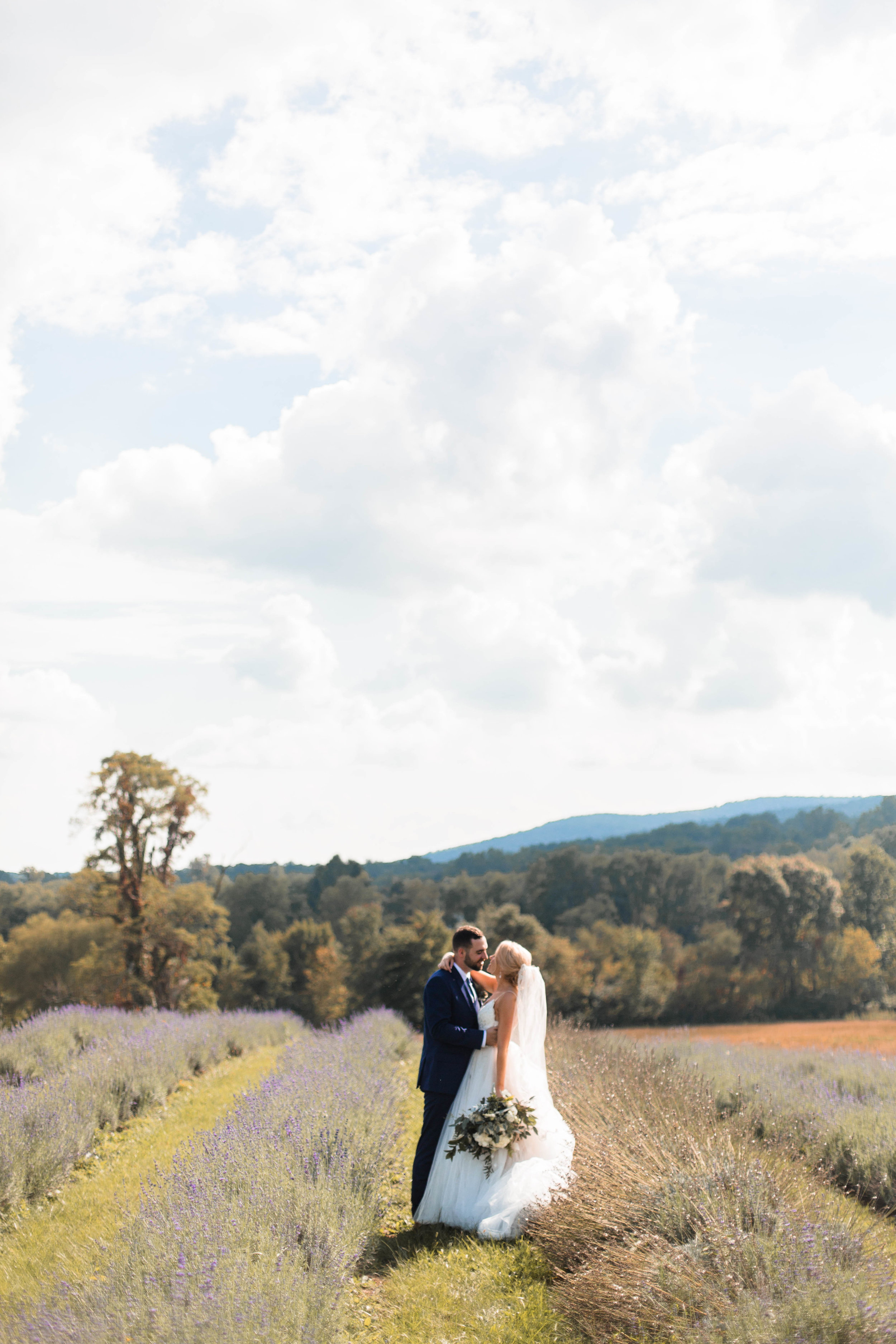 nicole-daacke-photography-intimate-wedding-in-a-lavender-field-washington-state-wedding-photographer-intimate-elopement-golden-lavender-field-wedding-photos-24.jpg