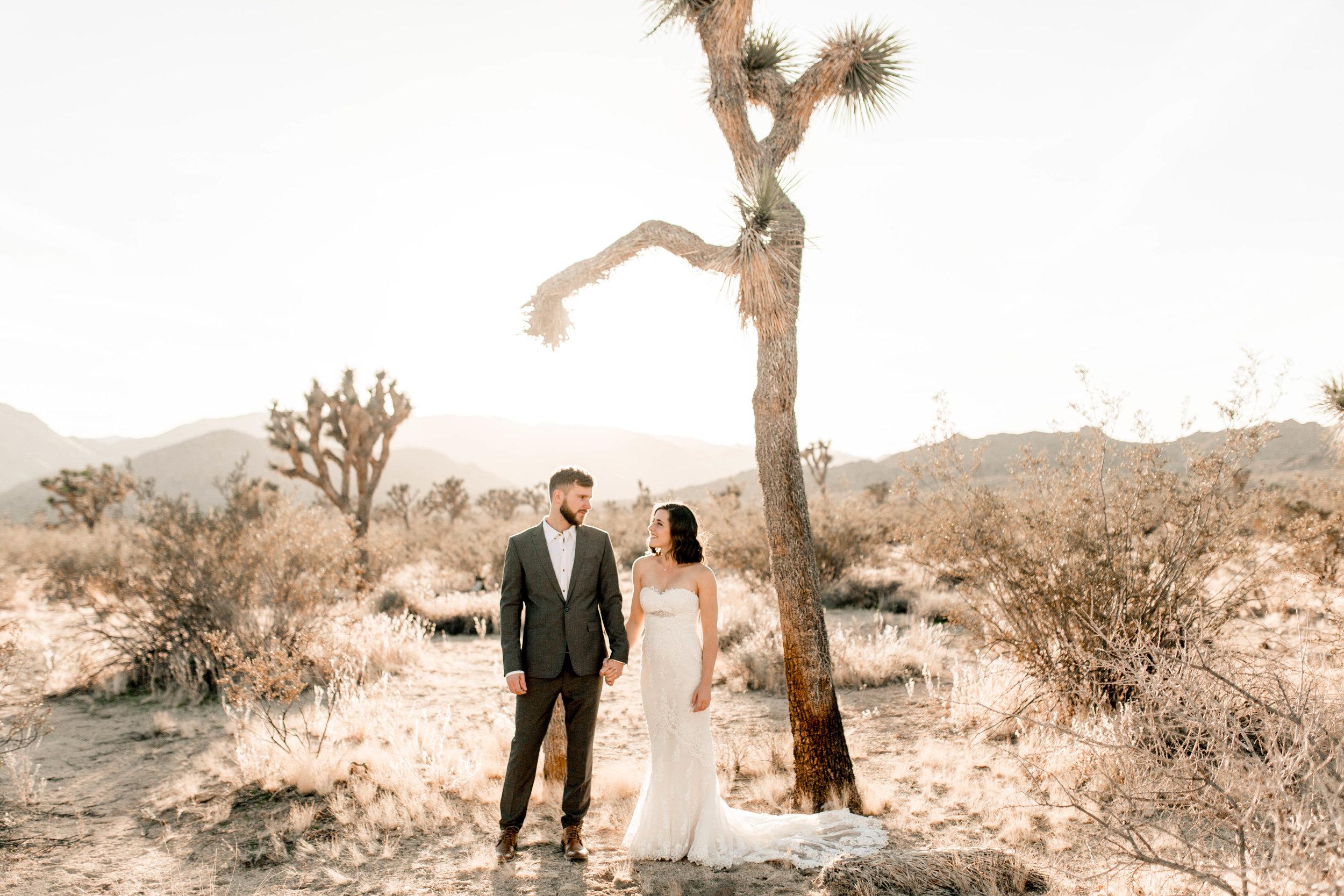 nicole-daacke-photography-joshua-tree-adventurous-elopement-wedding-national-park-wedding-photographer-adventure-wedding-adventurous-elopement-jtree-joshua-tree-national-park-wedding-photographer-intimate-weddings-golden-desert-love-7.jpg