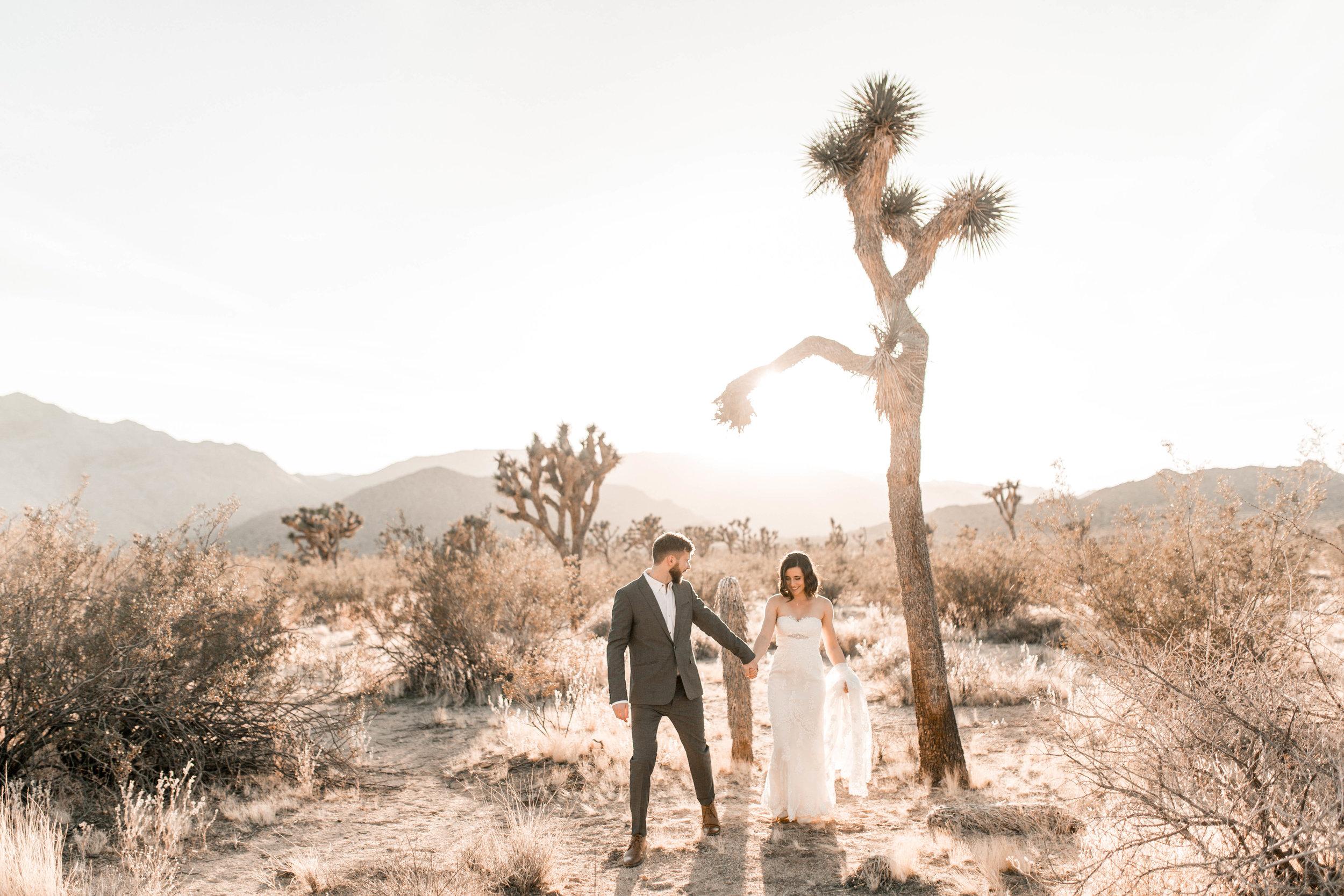 nicole-daacke-photography-joshua-tree-adventurous-elopement-wedding-national-park-wedding-photographer-adventure-wedding-adventurous-elopement-jtree-joshua-tree-national-park-wedding-photographer-intimate-weddings-golden-desert-love-14.jpg