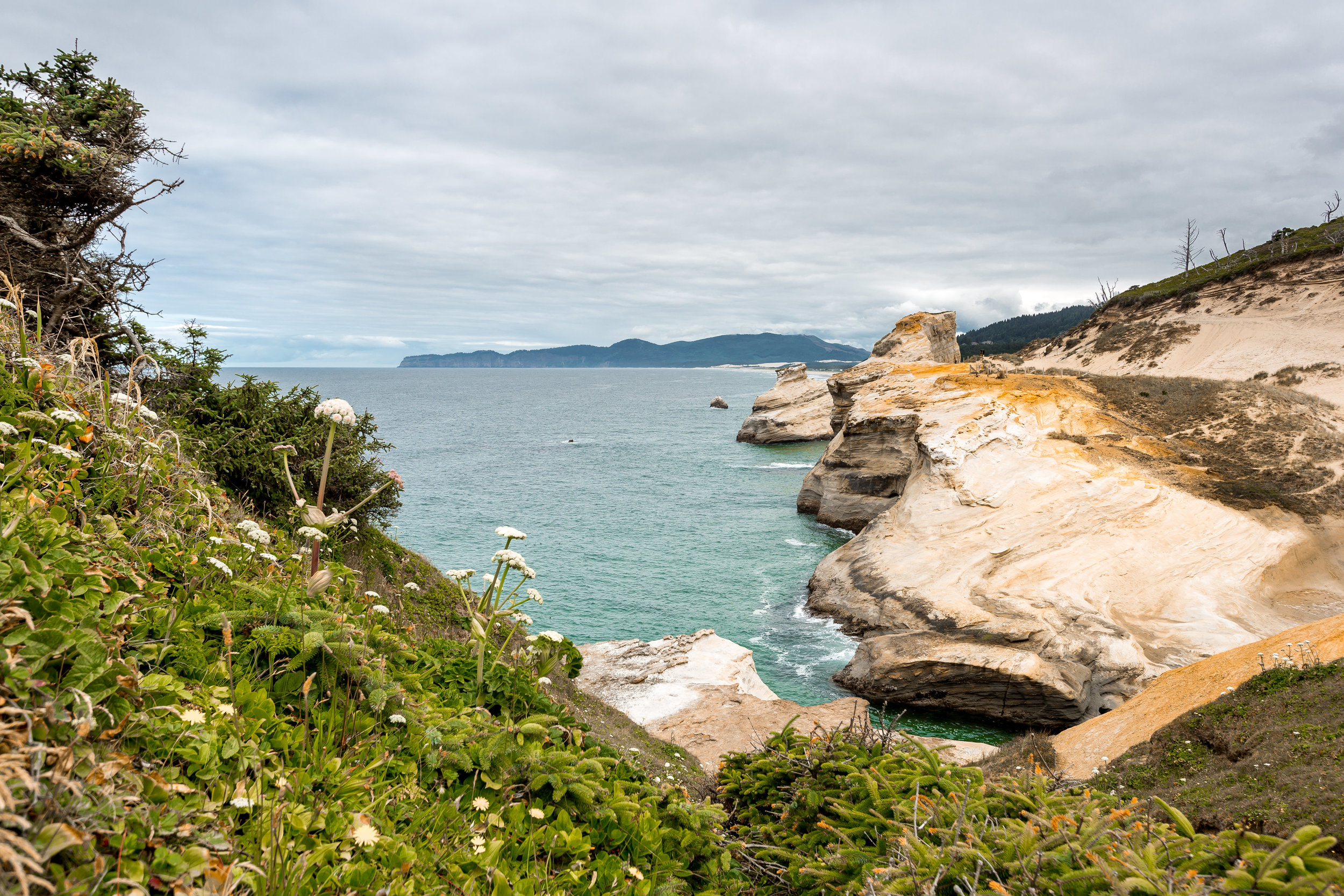 nicole-daacke-photography-oregon-coast-landscapes-elopement-photographer-wedding-photography-adventure-lifestyle-roadtrip-along-oregon-coast-cape-kiwanda-oceanside-beach-cannon-beach-oregon-pnw-4.jpg