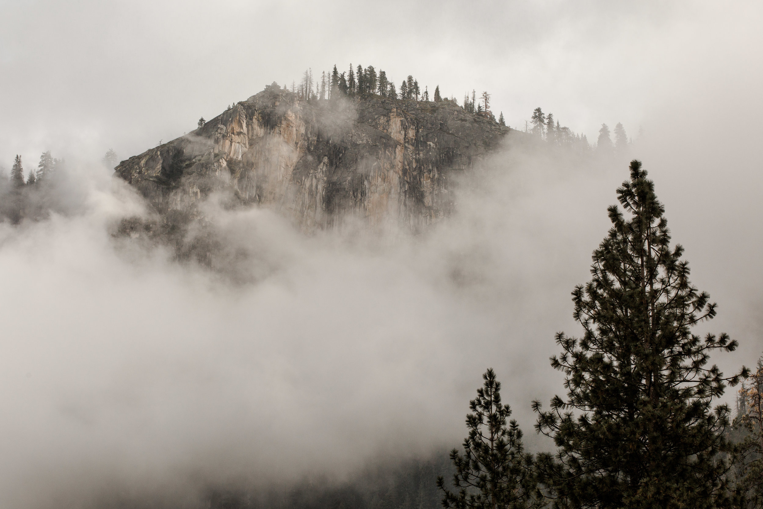 nicole-daacke-photography-yousemite-national-park-elopement-photographer-winter-cloud-moody-elope-inspiration-yosemite-valley-tunnel-view-winter-cloud-fog-weather-wedding-photos-2.jpg