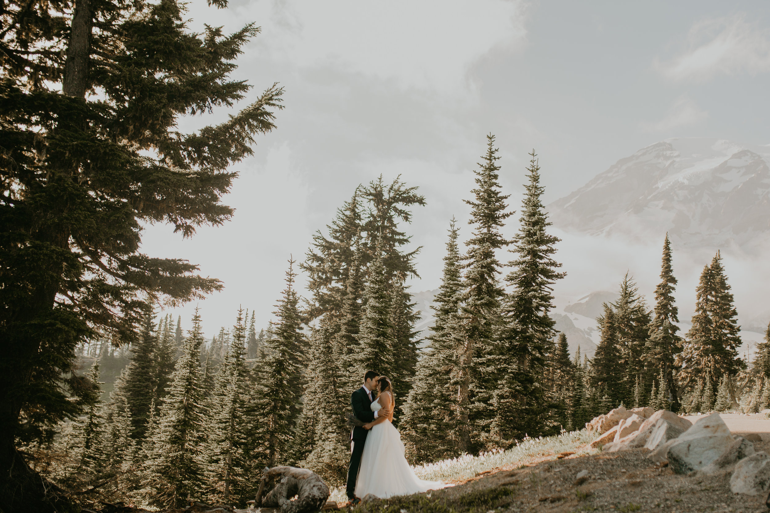 Nicole-Daacke-Photography-Mt-Rainier-elopement-photographer-washington-mountain-epic-wedding-photography-wildflowers-at-rainier-pine-tree-cloudy-summer-day-at-mountain-rainier-2.jpg