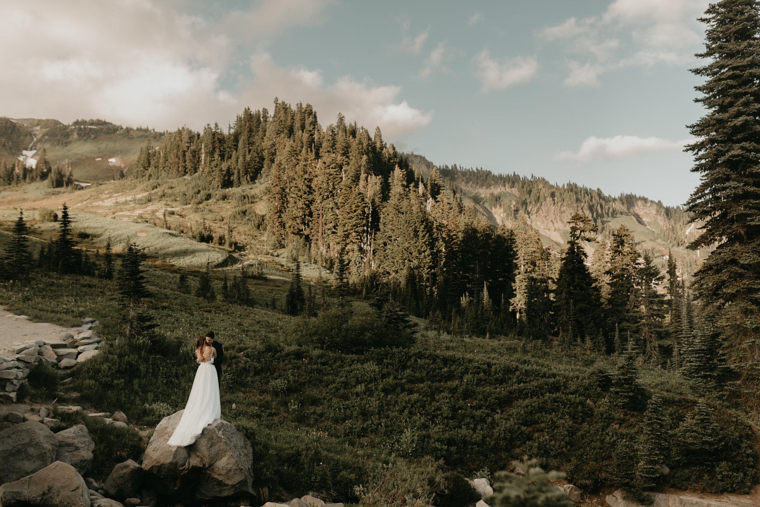 Nicole-Daacke-Photography-Mt-Rainier-elopement-photographer-washington-mountain-epic-wedding-photography-wildflowers-at-rainier-pine-tree-cloudy-summer-day-at-mountain-rainier-19.jpg