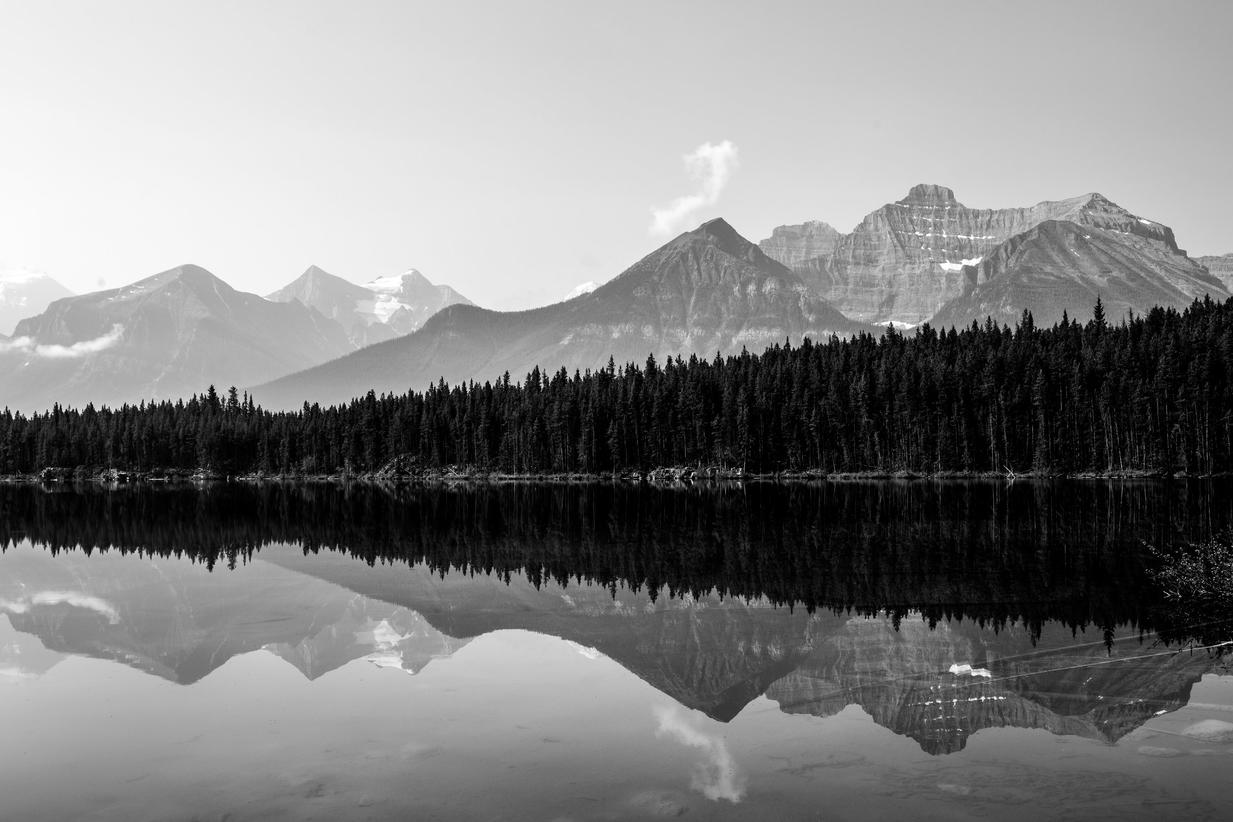 nicole-daacke-photography-banff-national-park-yoho-jasper-canada-parks-alberta-landscape-photographer-canadian-rockies-elopement-photographer-kananaskis-landscape-photos-4909.jpg