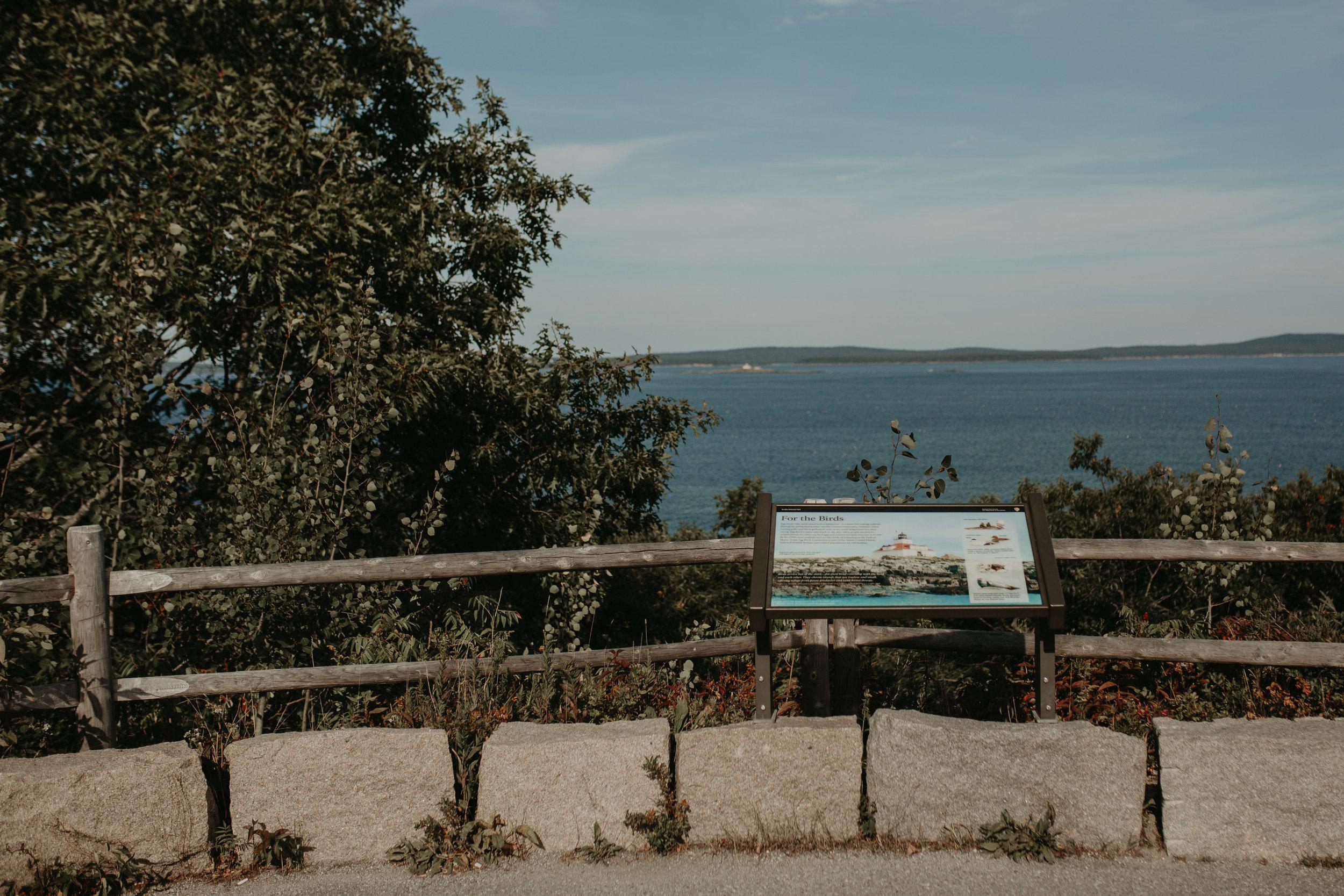 nicole-daacke-photography-Elopement-rocky-shoreline-coast-Acadia-National-Park-elopement-photographer-inspiration-maine-elopement-otter-cliffs-schoonic-head-point-11.jpg