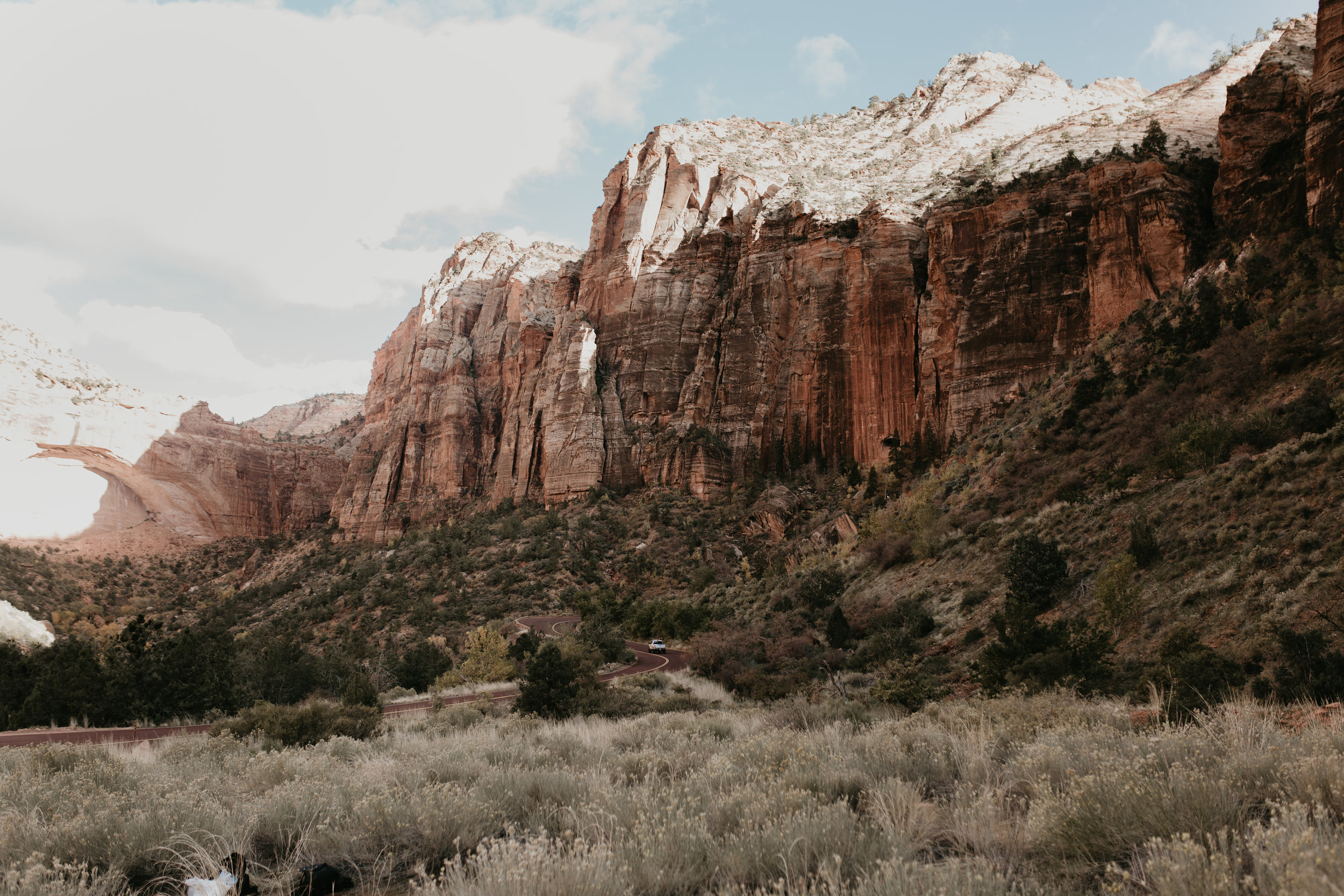 nicole-daacke-photography-zion-national-park-elopement-photographer-canyon-overlook-trail-elope-hiking-adventure-wedding-photos-fall-utah-red-rock-canyon-stgeorge-eloping-photographer-12.jpg