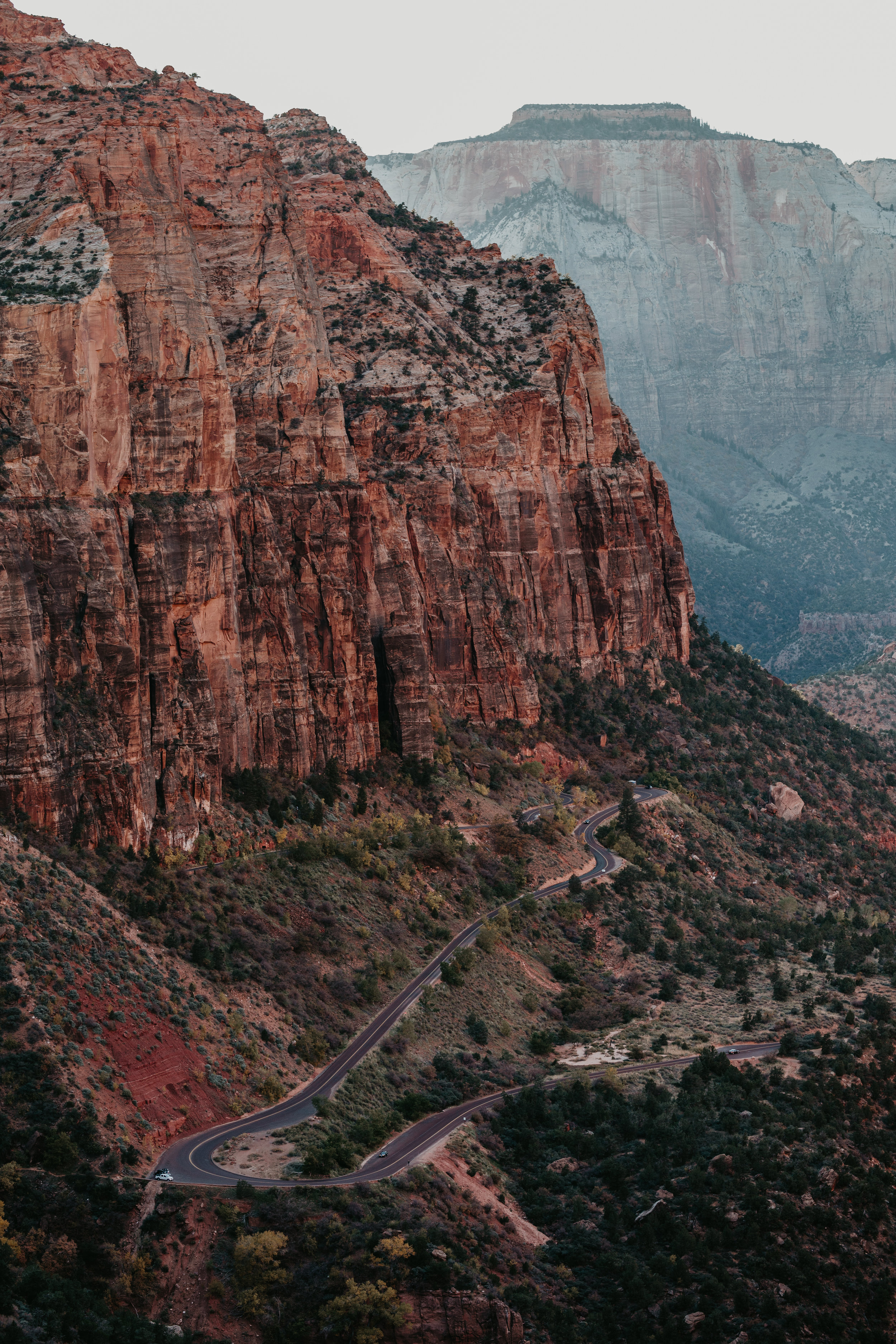 nicole-daacke-photography-zion-national-park-elopement-photographer-canyon-overlook-trail-elope-hiking-adventure-wedding-photos-fall-utah-red-rock-canyon-stgeorge-eloping-photographer-57.jpg