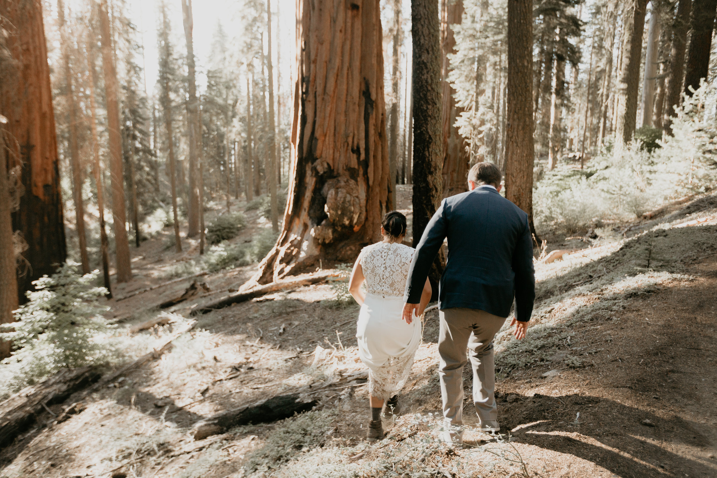 nicole-daacke-photography-sequoia-national-park-adventurous-elopement-sequoia-elopement-photographer-redwoods-california-intimate-wedding-photographer-8.jpg