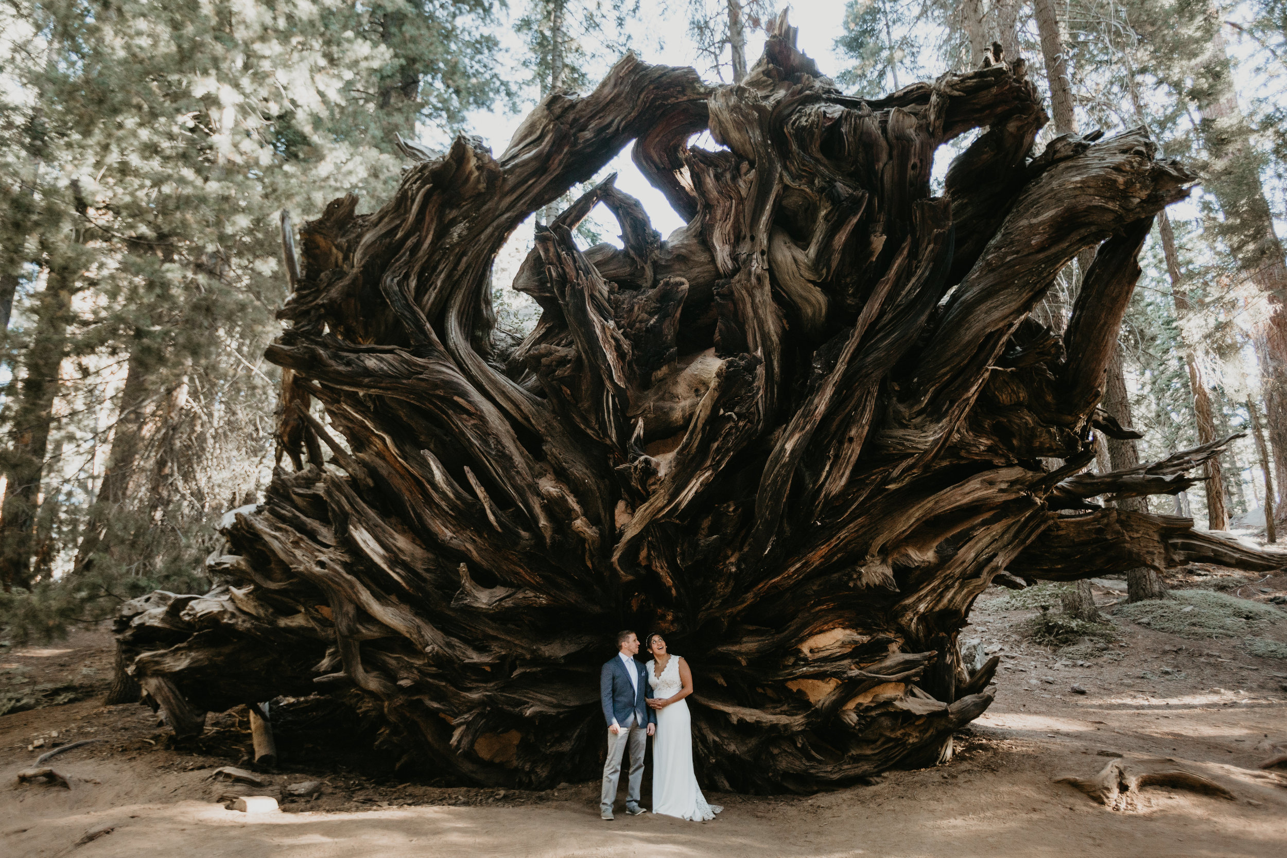 nicole-daacke-photography-sequoia-national-park-adventurous-elopement-sequoia-elopement-photographer-redwoods-california-intimate-wedding-photographer-10.jpg