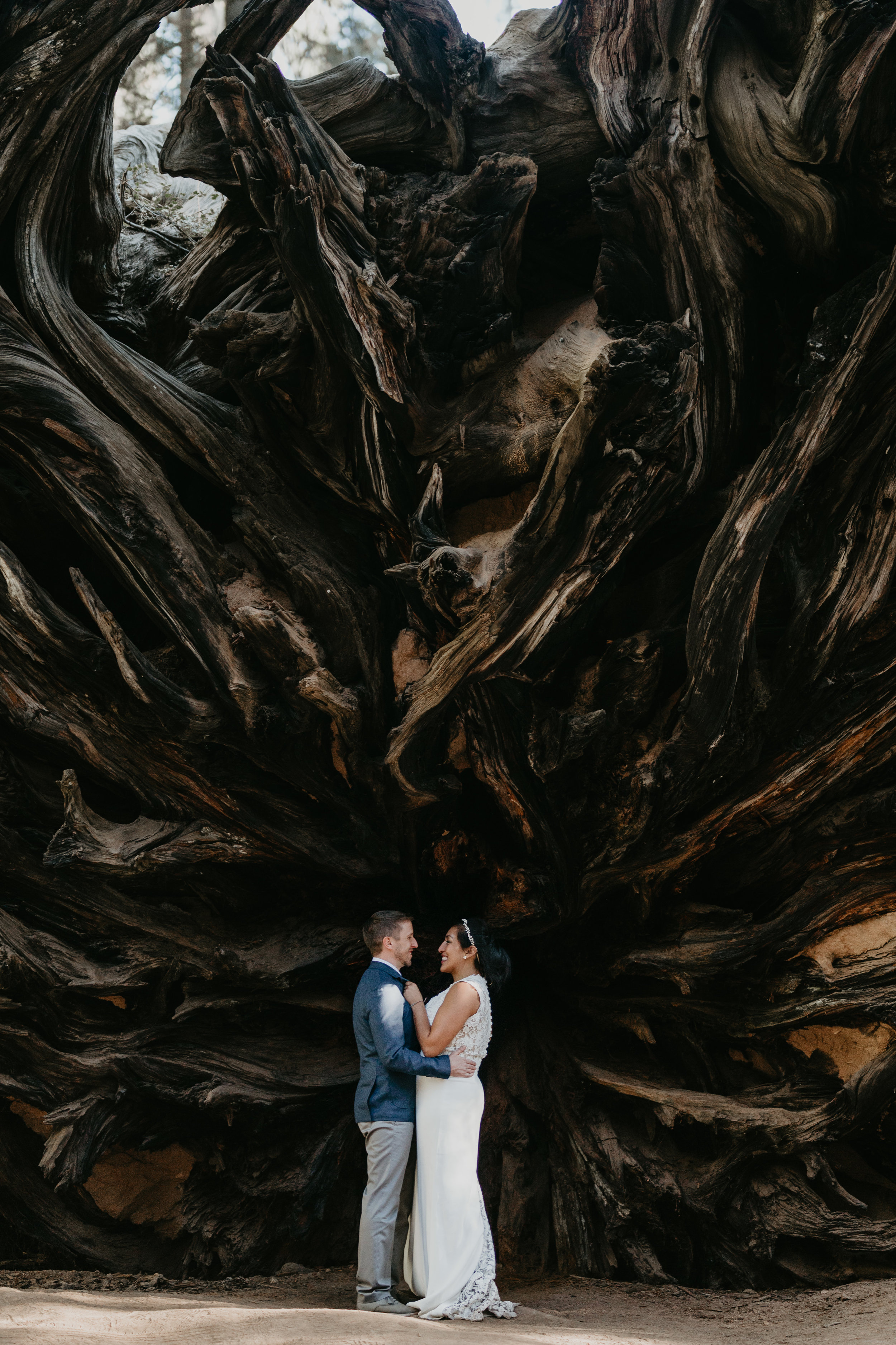 nicole-daacke-photography-sequoia-national-park-adventurous-elopement-sequoia-elopement-photographer-redwoods-california-intimate-wedding-photographer-12.jpg
