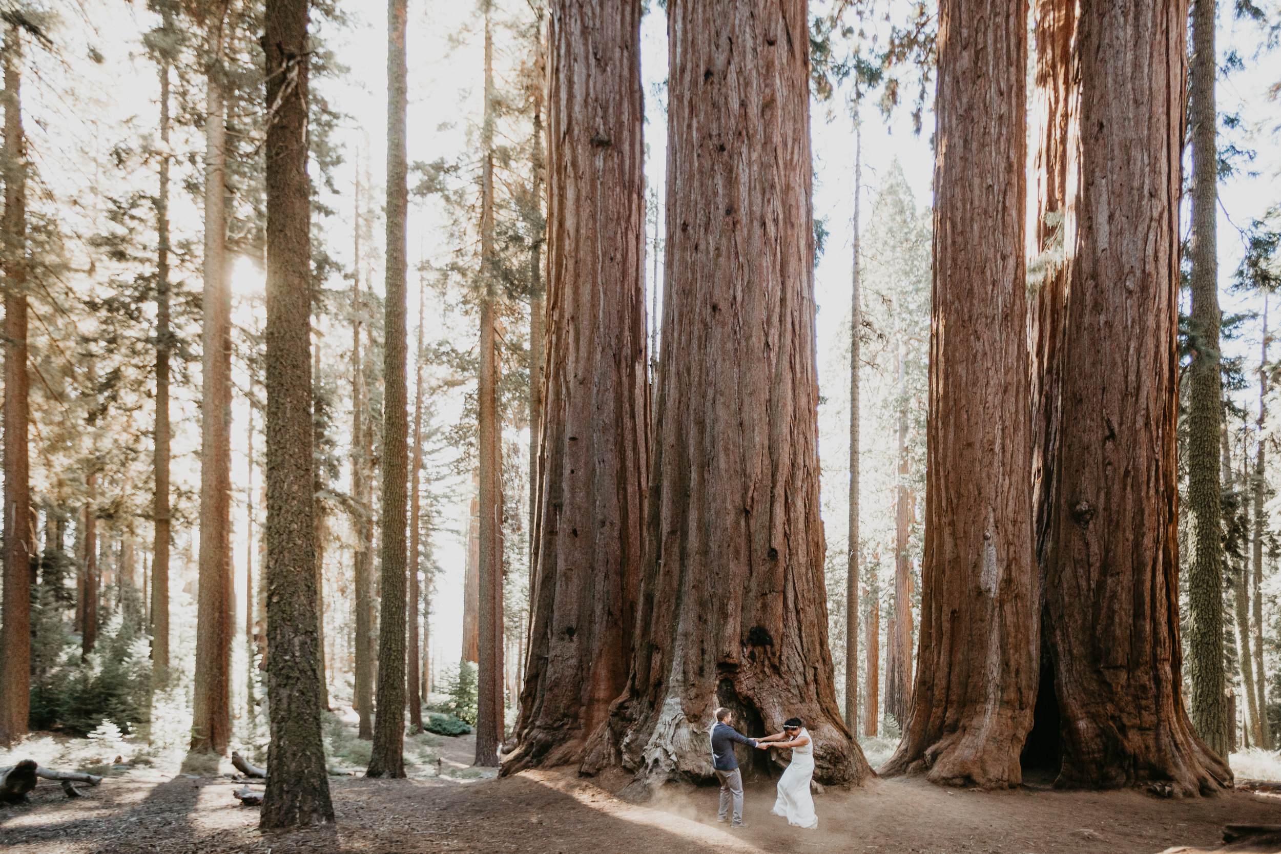nicole-daacke-photography-sequoia-national-park-adventurous-elopement-sequoia-elopement-photographer-redwoods-california-intimate-wedding-photographer-14.jpg