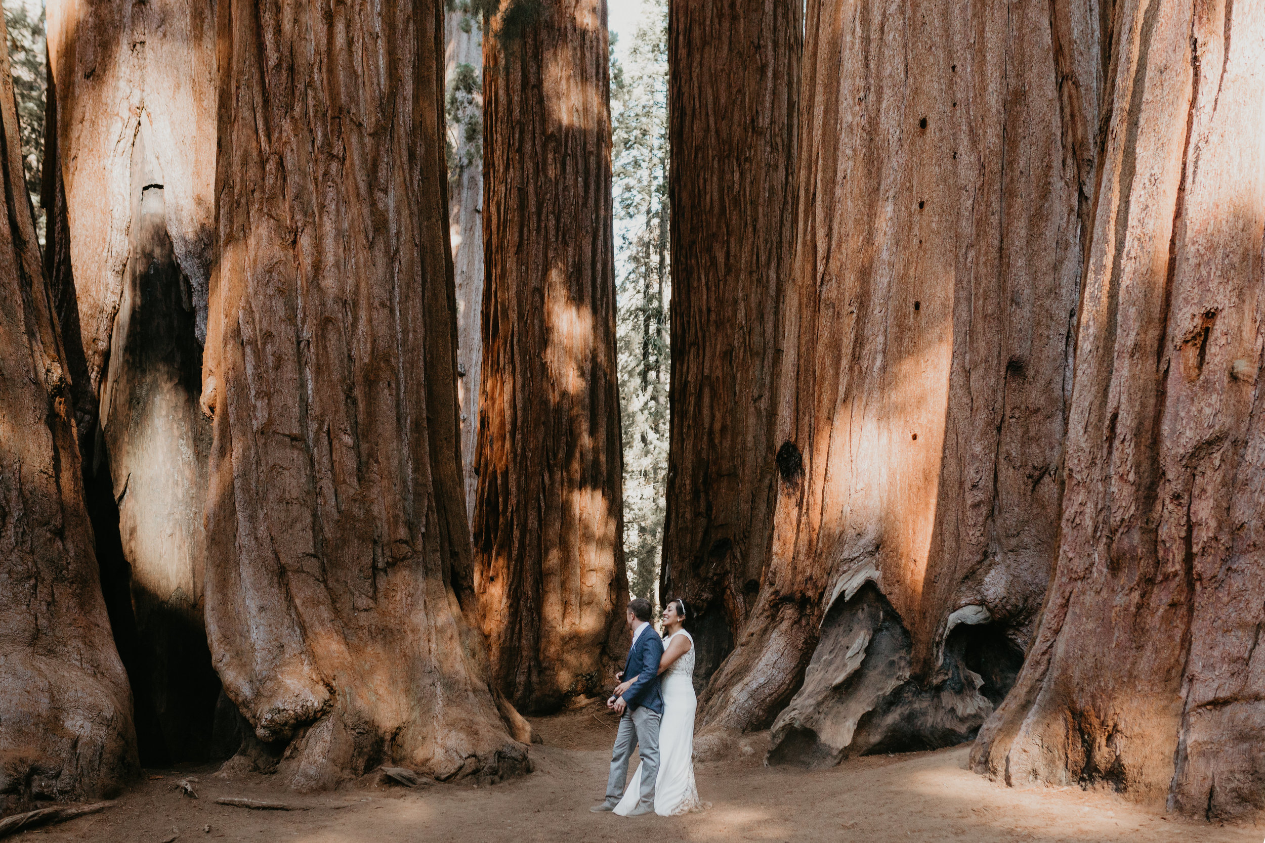 nicole-daacke-photography-sequoia-national-park-adventurous-elopement-sequoia-elopement-photographer-redwoods-california-intimate-wedding-photographer-15.jpg