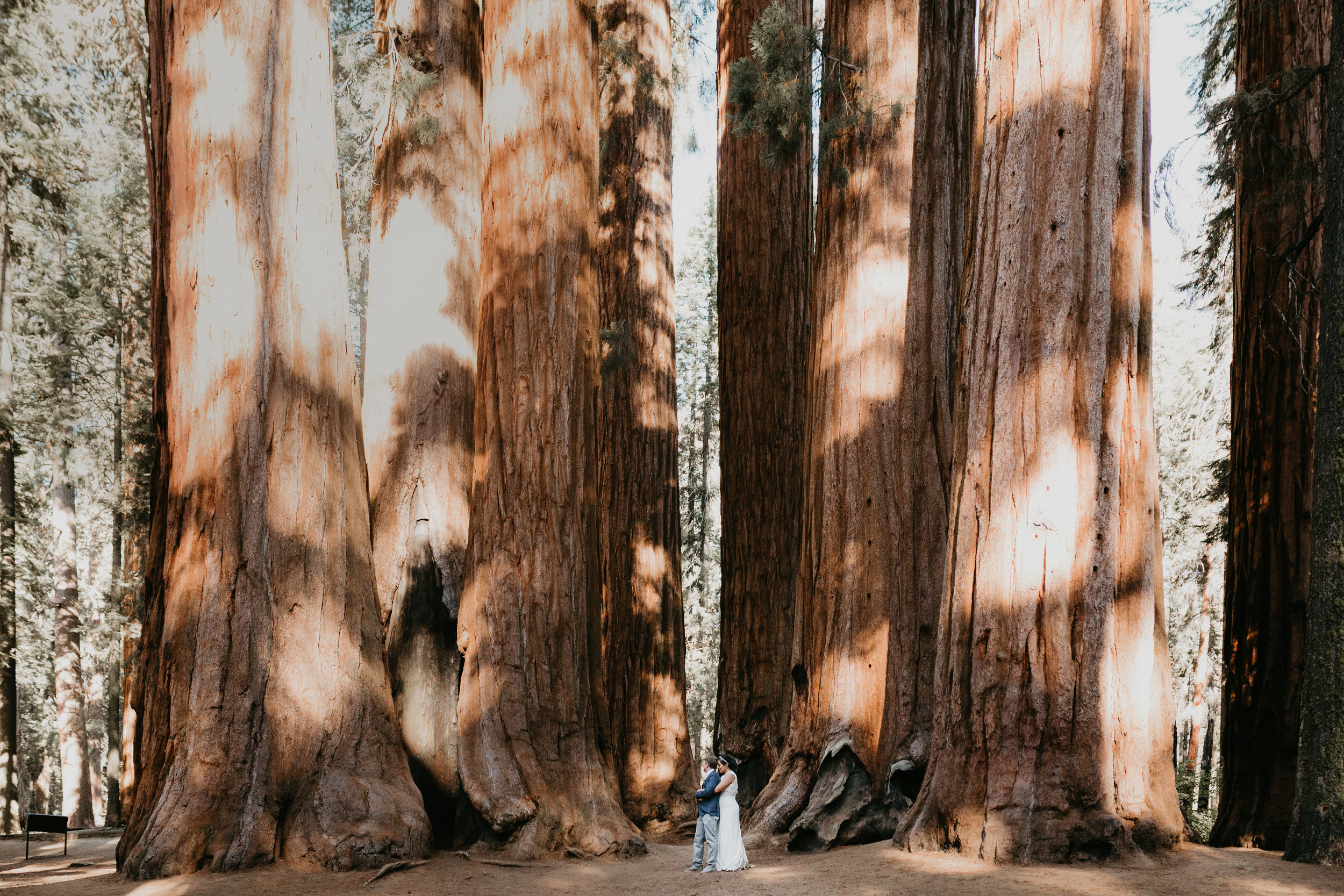 nicole-daacke-photography-sequoia-national-park-adventurous-elopement-sequoia-elopement-photographer-redwoods-california-intimate-wedding-photographer-16.jpg