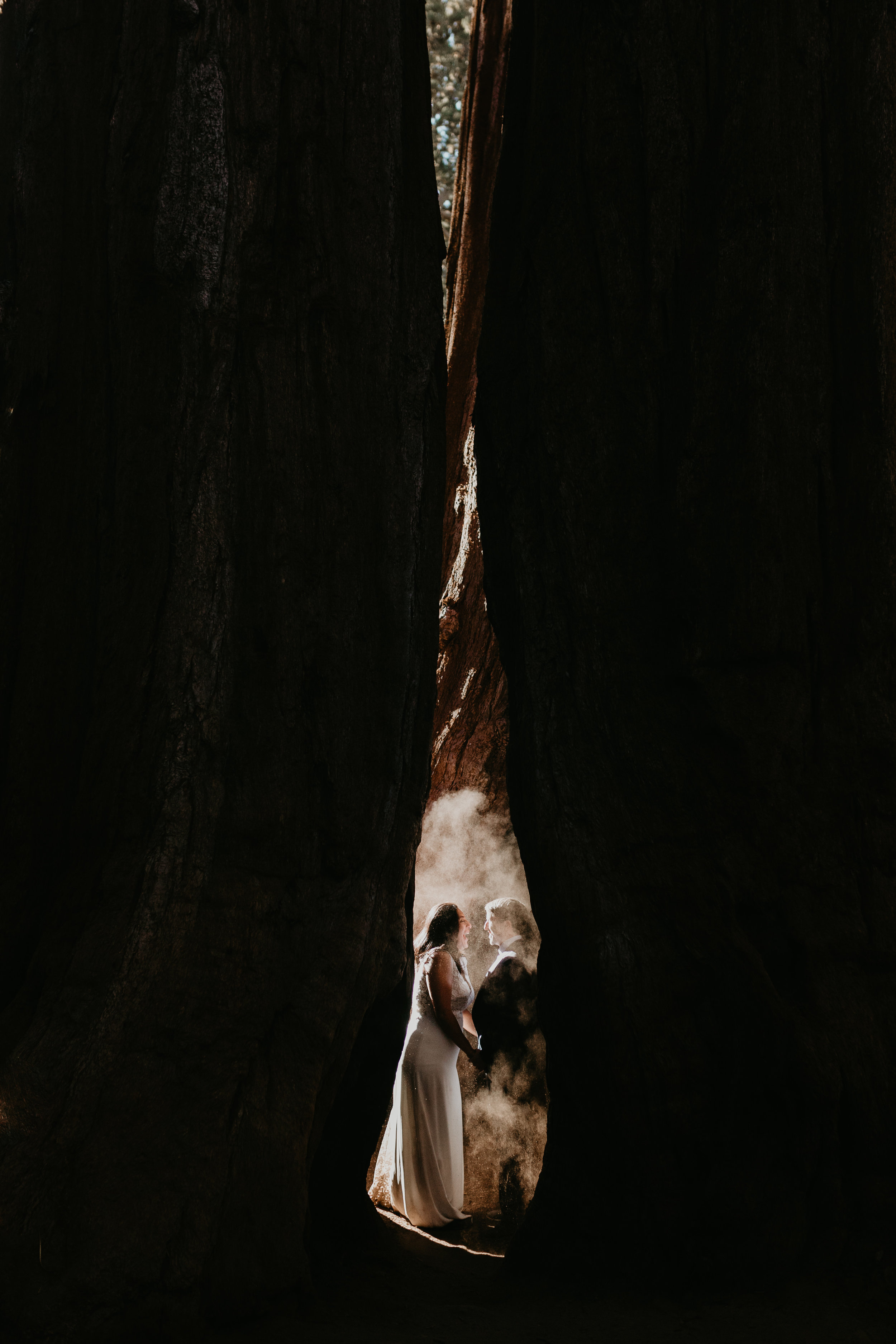 nicole-daacke-photography-sequoia-national-park-adventurous-elopement-sequoia-elopement-photographer-redwoods-california-intimate-wedding-photographer-18.jpg