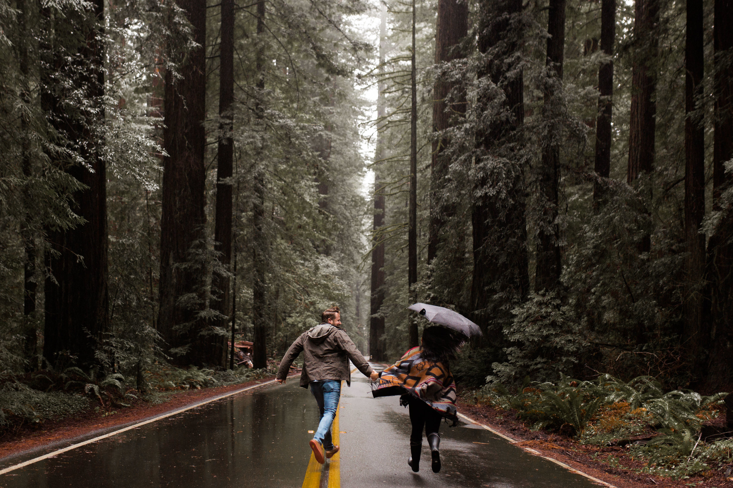 nicole-daacke-photography-redwoods-national-park-forest-rainy-foggy-adventure-engagement-session-humboldt-county-old-growth-redwood-tree-elopement-intimate-wedding-photographer-1.jpg