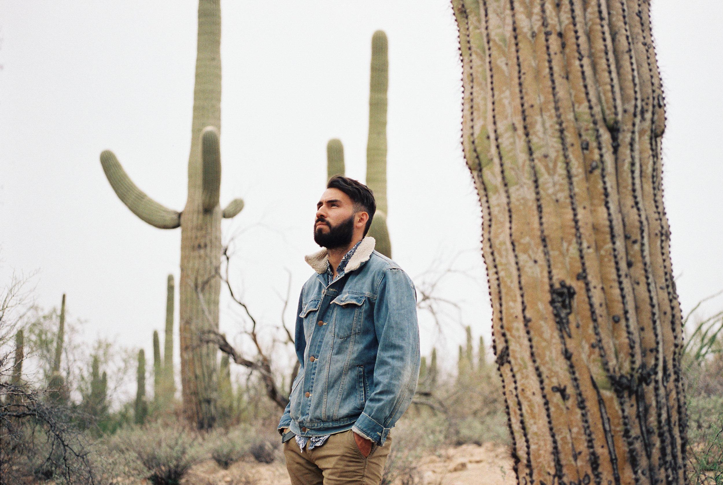 Saguaro National Park // Laura Goldenberger