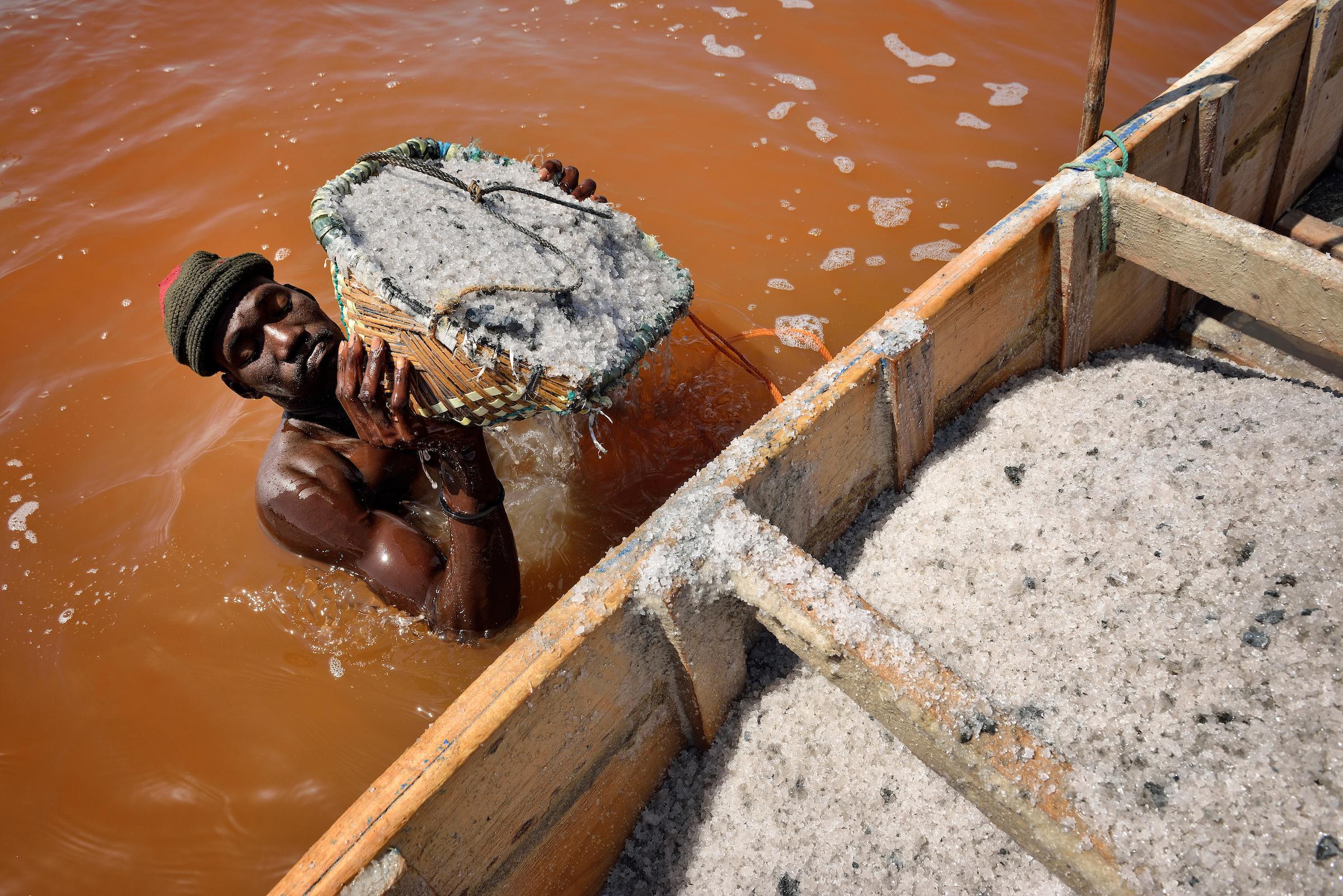 26. Februar 2013. Djiby Gnigne hievt mit einem Korb Salz aus dem Wasser und schüttet es in sein Holzboot. Bei dieser Arbeit muss Djiby Gnigne gut darauf achten, dass ihm kein Salzwasser in die Augen kommt, da er die Arbeit sonst unterbrechen muss.