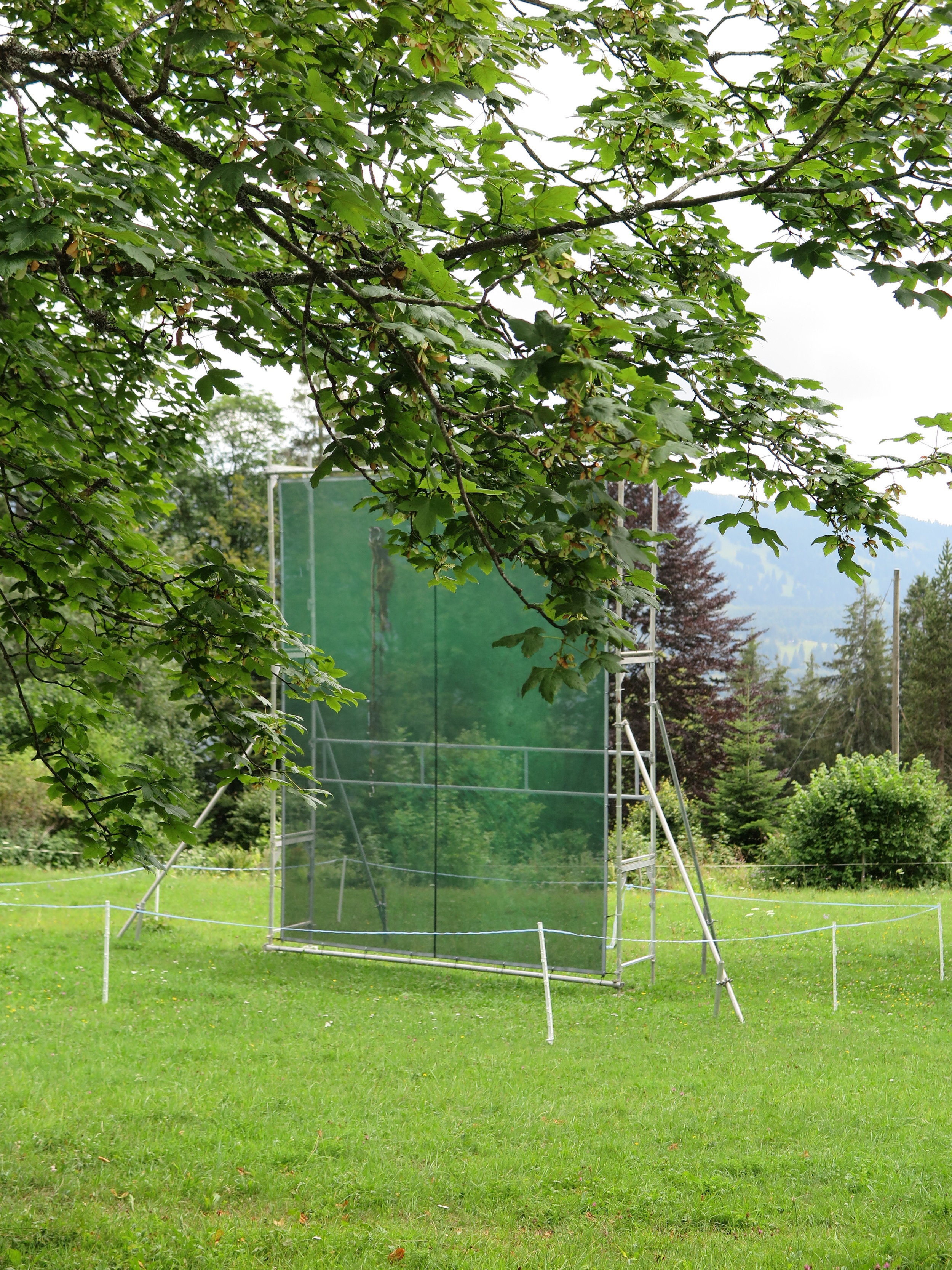 Deposit, Haras national d'avenches, Suisse | Yann Mingard
