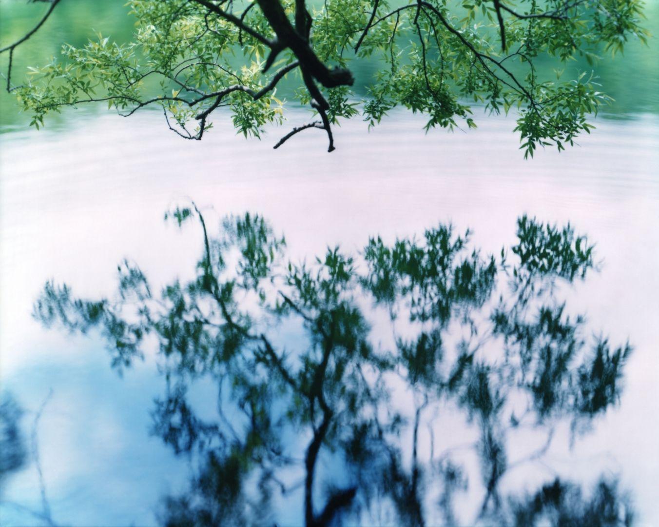 Christophe-Guye-Galerie-Risaku-Suzuki-17WM-758.jpg
