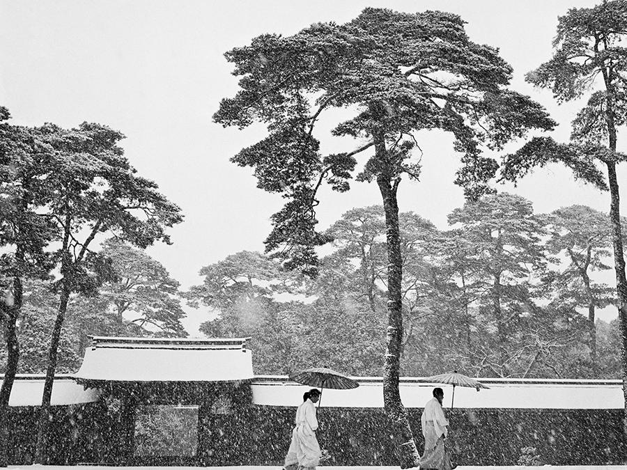 Werner Bischof, Meiji Shrein, Tokyo, Japan, 1951, Silver Gelatine Print, 100 x 150 cm, Open Edition (©Werner Bischof Estate/Magnum Photos)