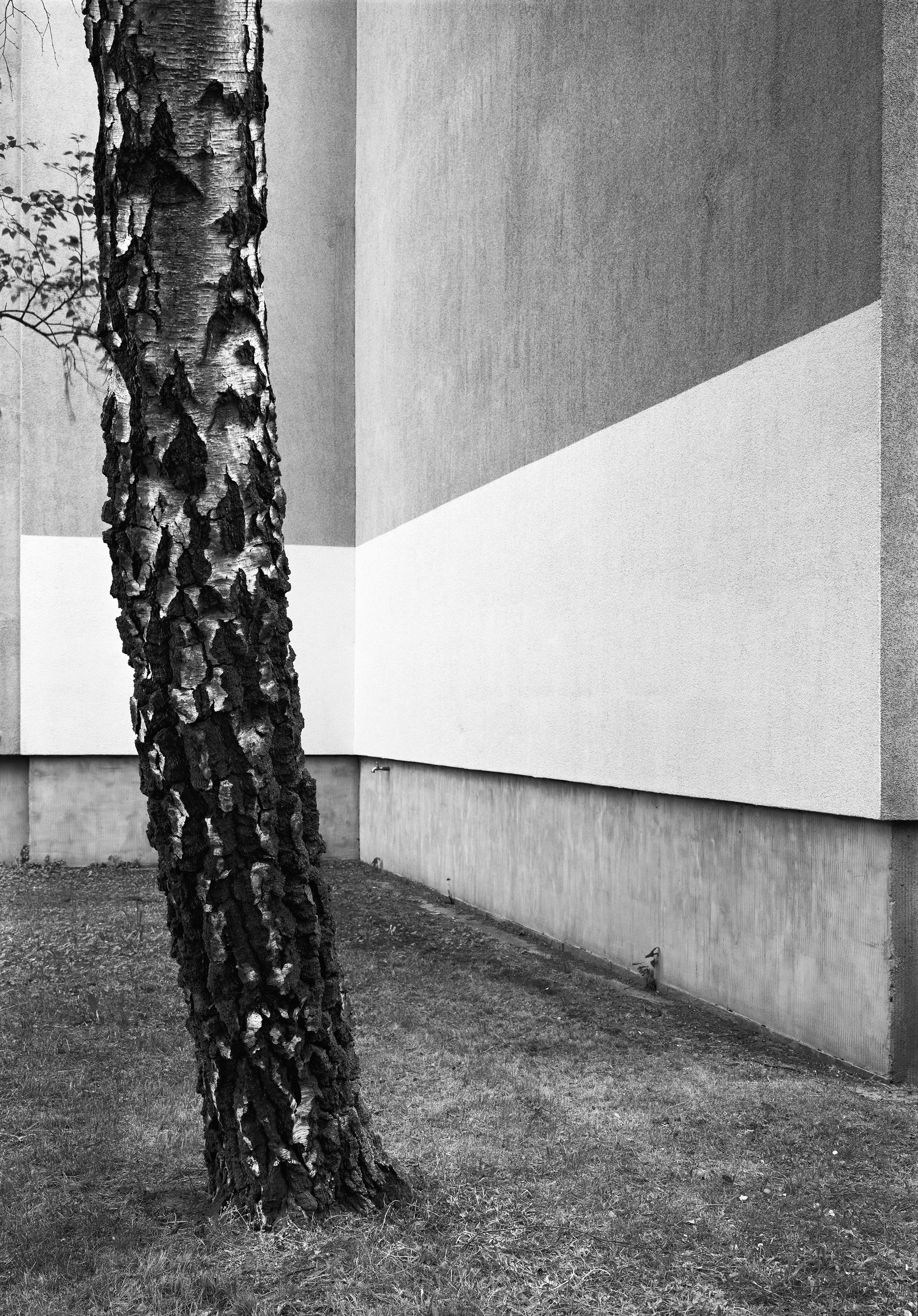 Ohne Titel (Neue Strasse), 2017 | Lukas Hoffmann