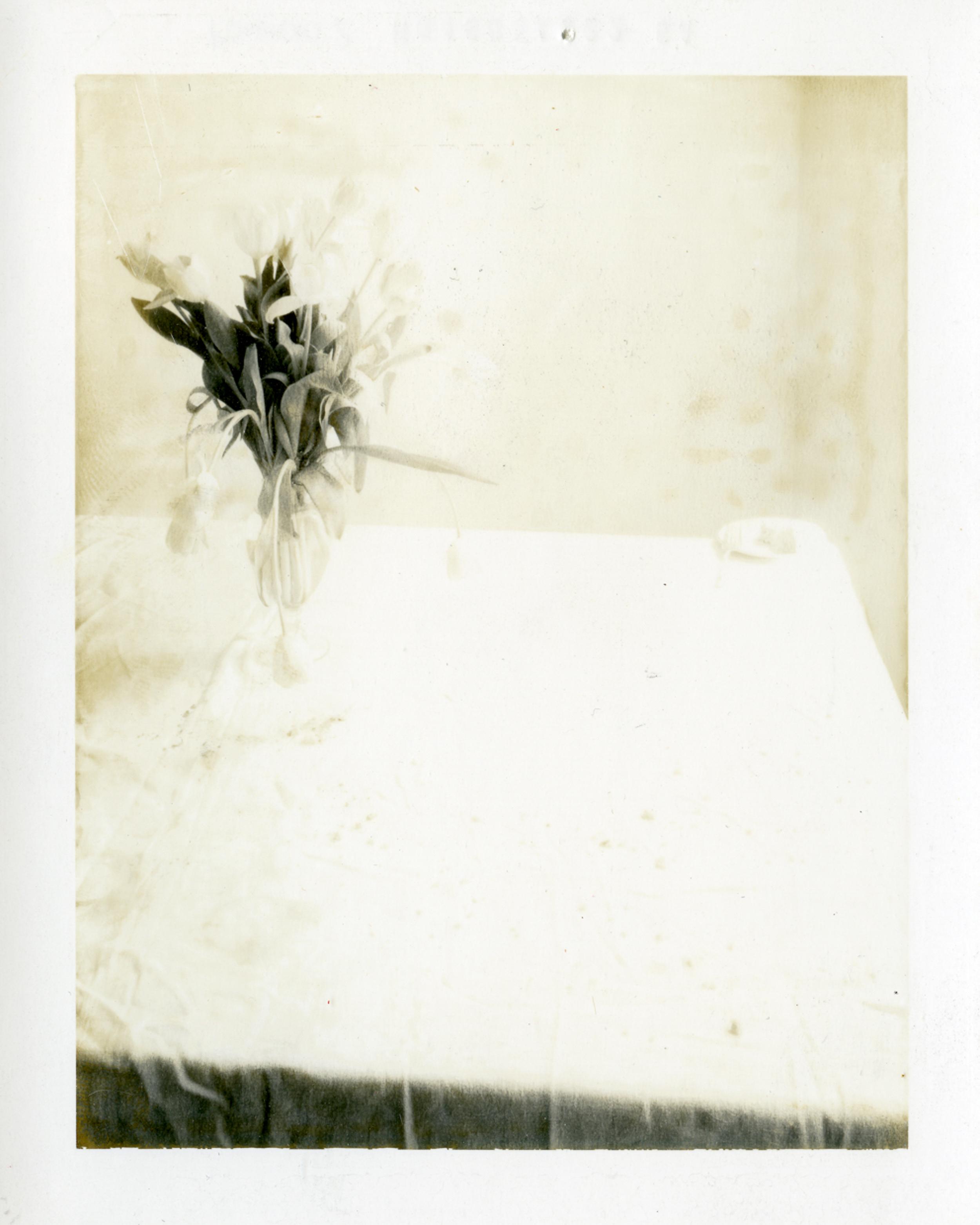 © Laura Letinsky, Sans titre, de la série Time's Assignation, 2002. Courtesy galerie Yancey Richardson, New York