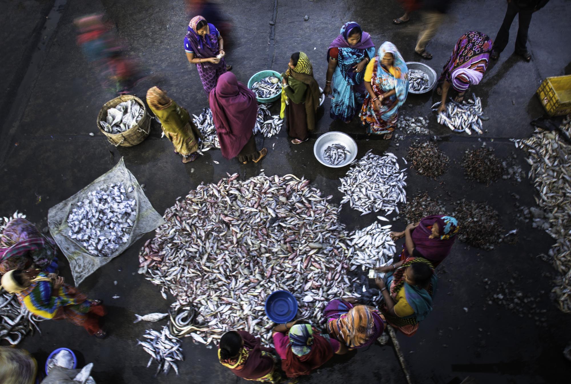Fischmarkt in Diu.jpg
