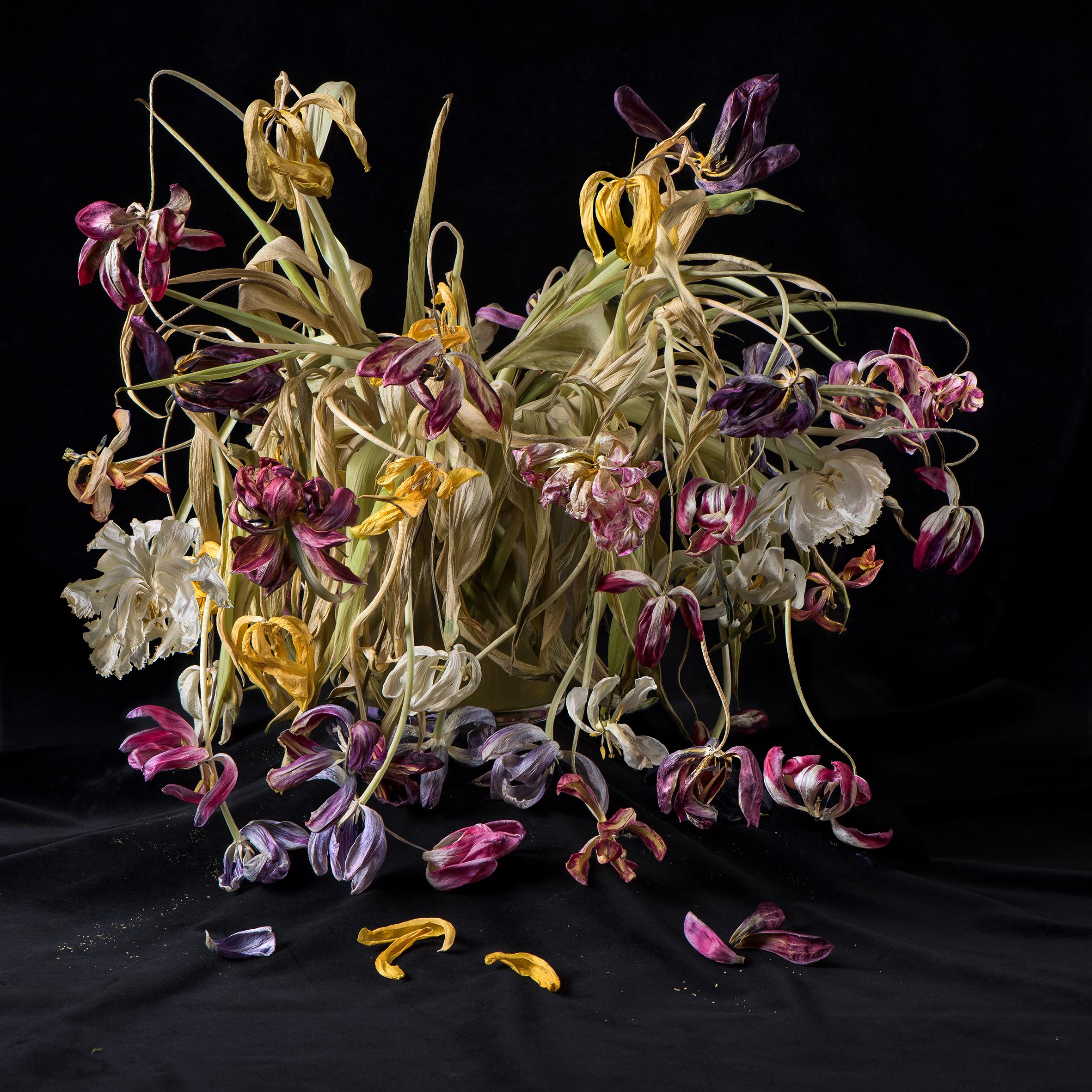 Blossom_Anna-Halm-Schudel_01_Tulpen-Bouquets.jpg