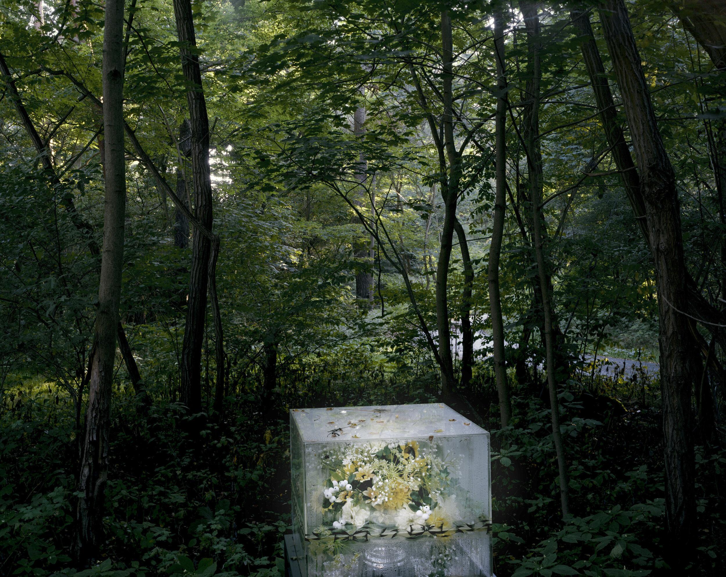 Die seltsamen Tagen, 2013 | Ute & Werner Mahler
