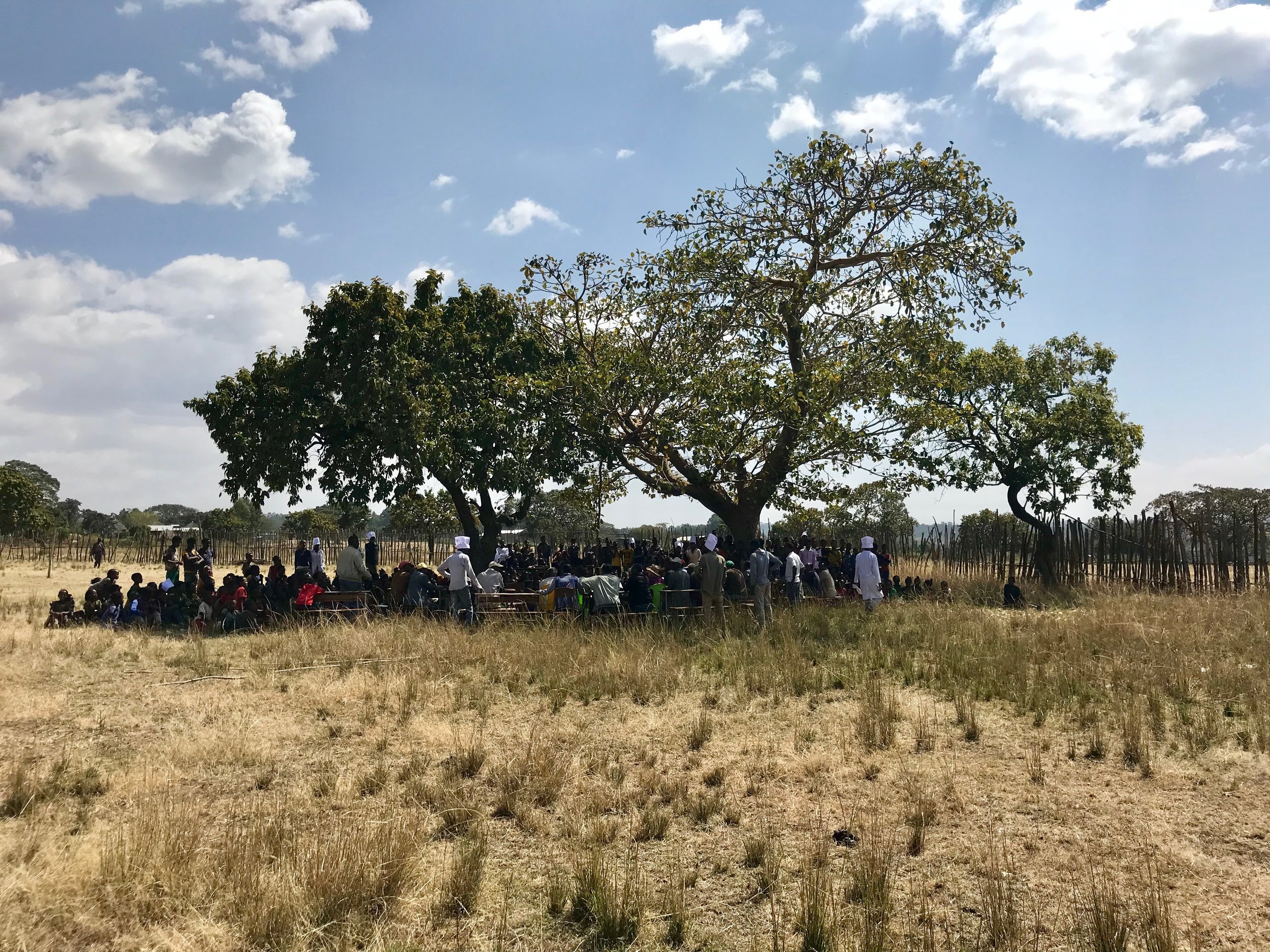 Students, teachers, community leaders, and representatives from Friends of Homacho gather for an all-school assembly under a tree in the middle of the school yard.