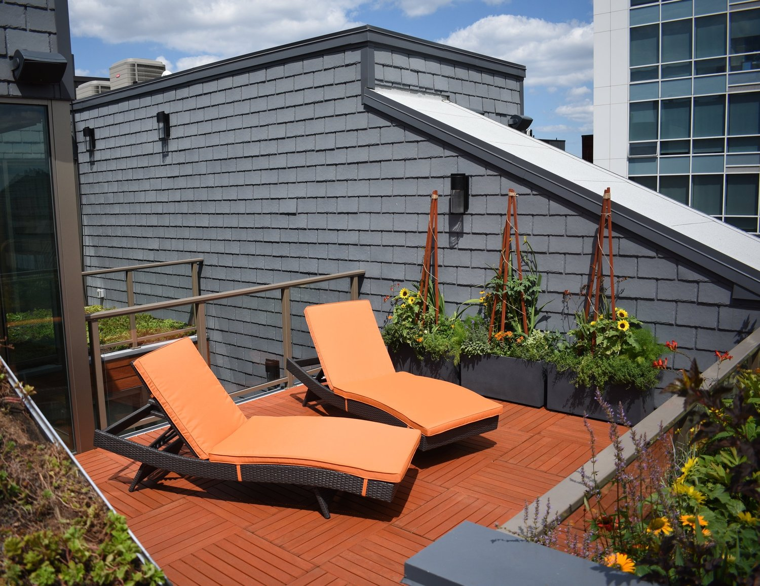 Green roof deck design by Urban Jungle in Philadelphia.