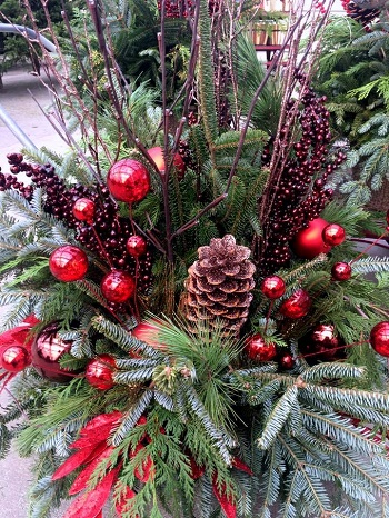 Winter Urns - Come and join Carla for a creative social, learning the techniques of making your own lush holiday/winter urn.We will be assembling our urns with a selection local greens, seasonal berries, unique branches, cones, flowers and other accents.Cost – $95 includes all materials.Class is limited to 6 students.Check out our calendar of events to register for the next class.