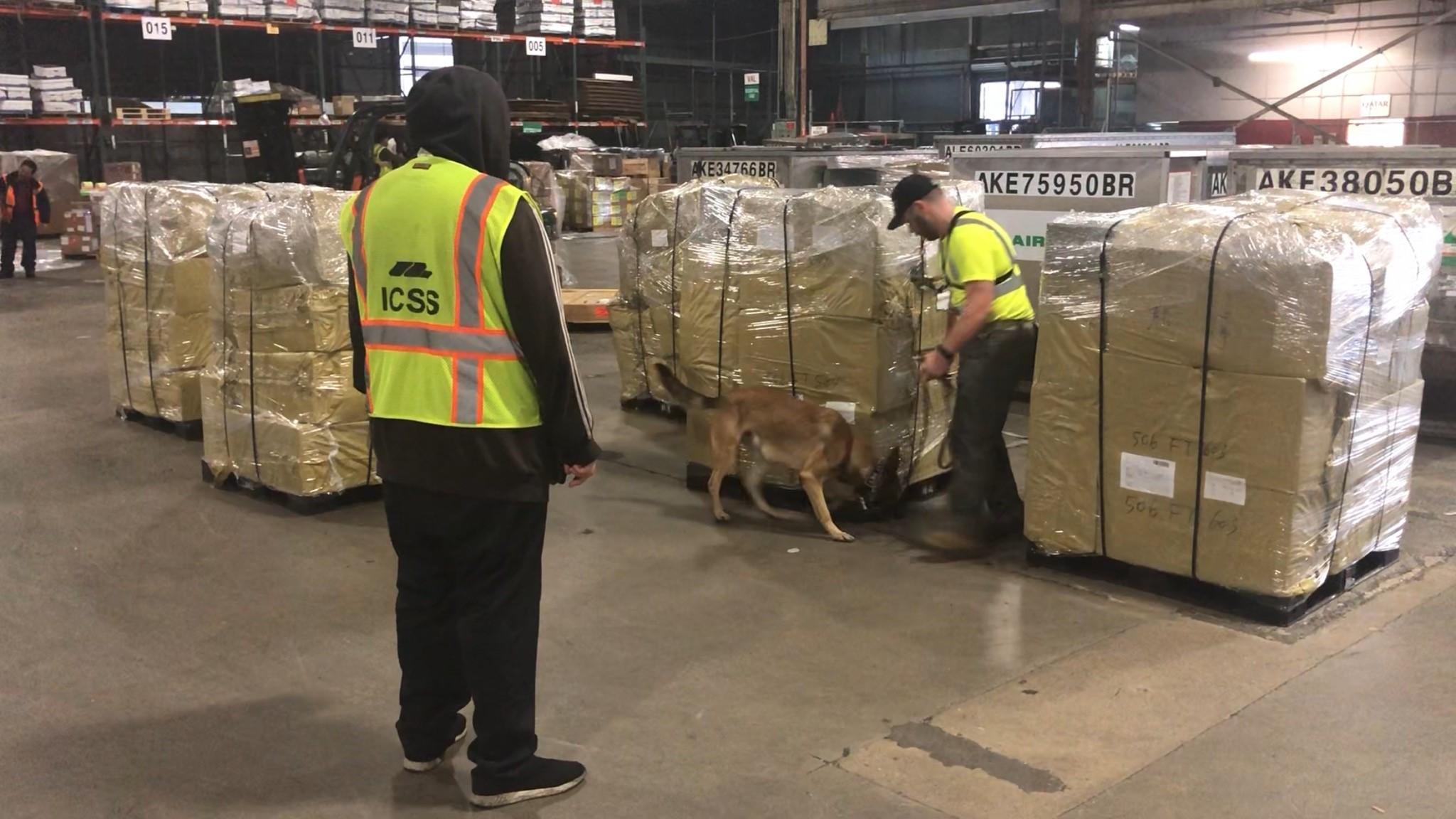 GK9PG's Canine Cargo Screening at Mercury Air Group