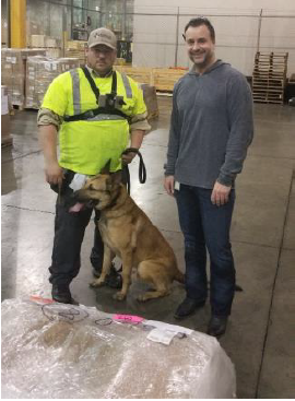 Oz flanked by his handler from Global K9 Protection Group and Shipco's Airfreight Manager Craig Cannizzaro.