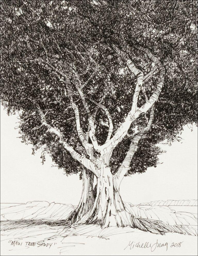 Maui Tree Study ~ Kihei, HI