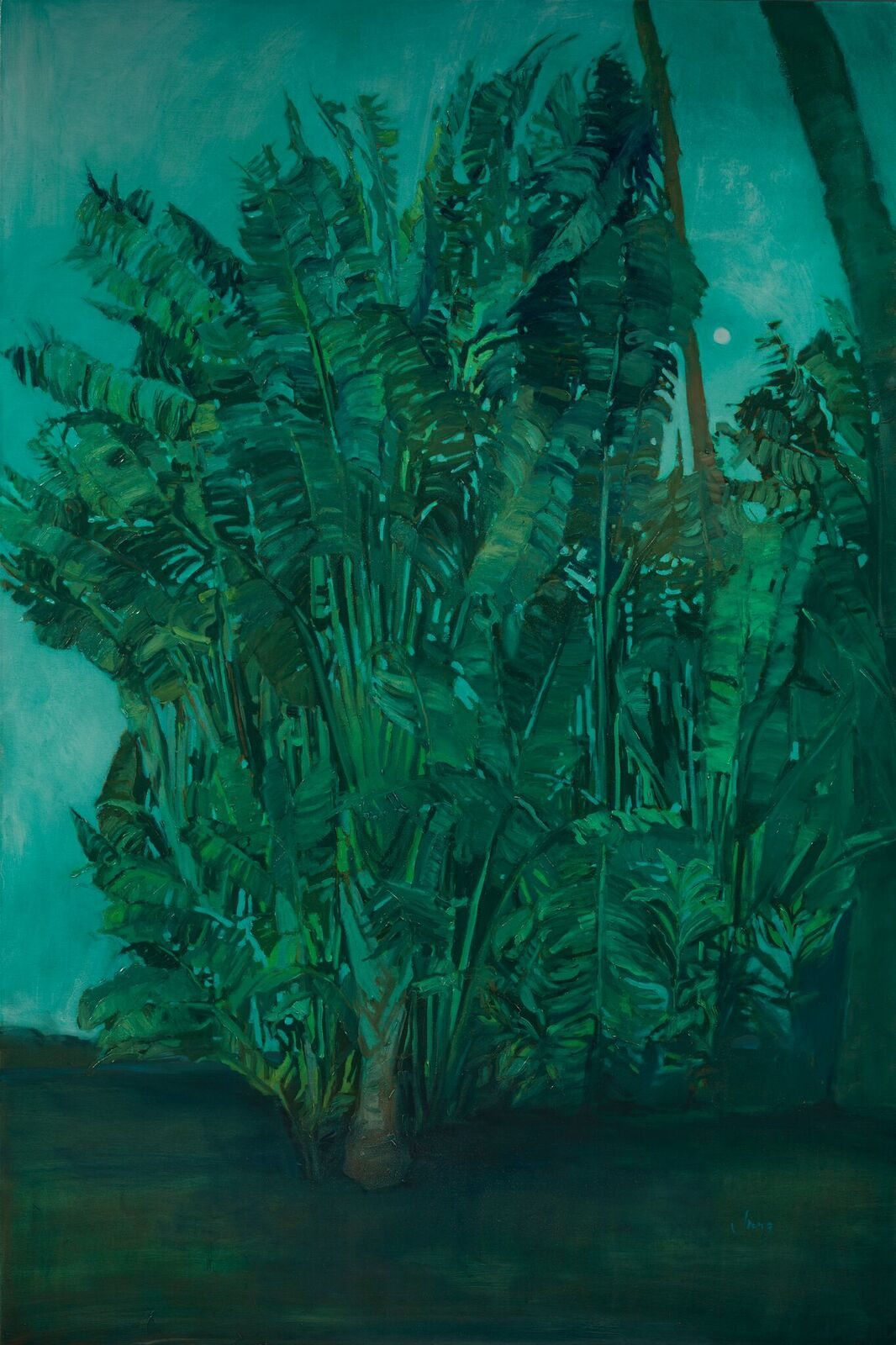 Nocturne in Green ~ Kihei, HI