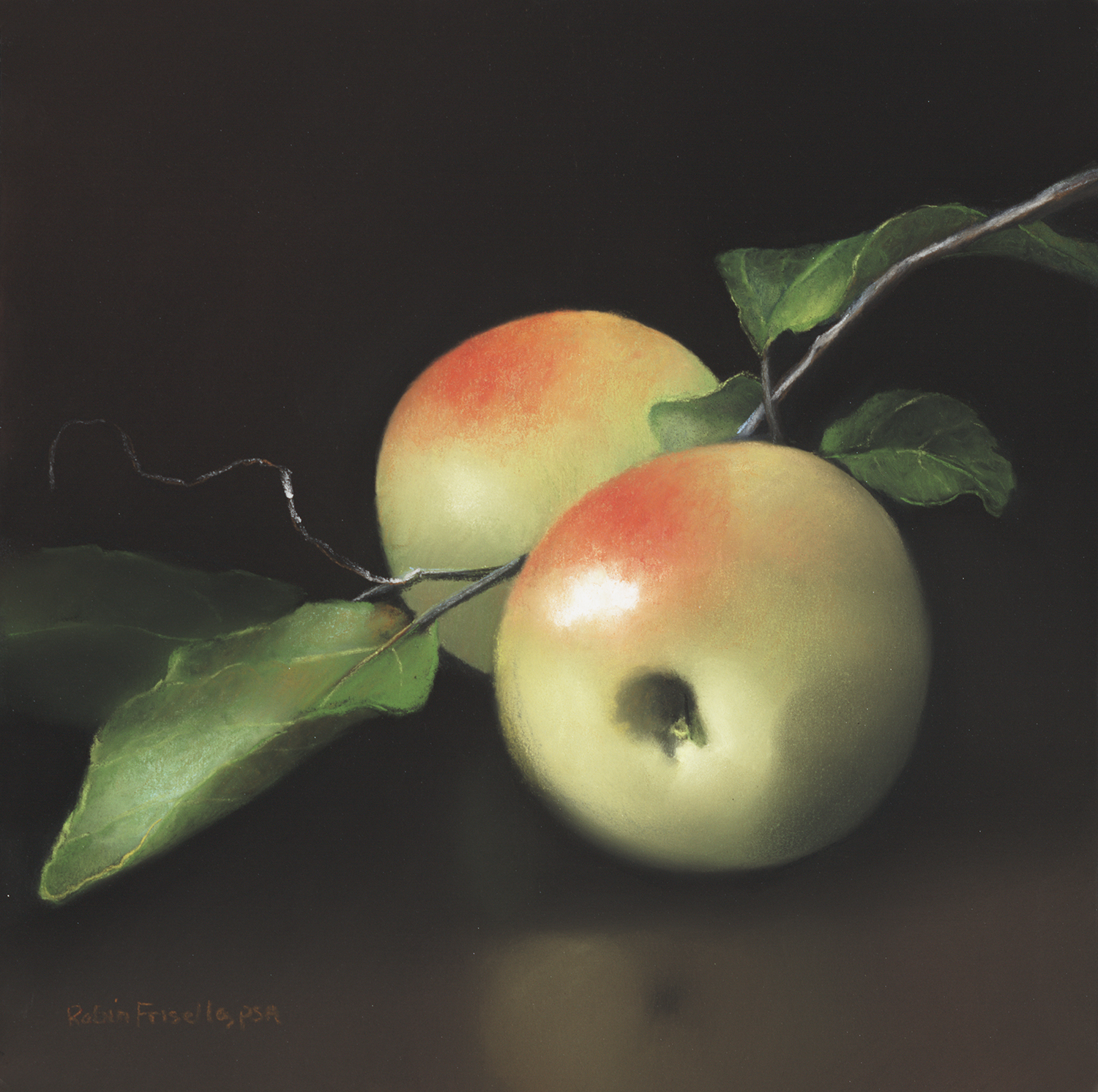 Green Apples on a Vine