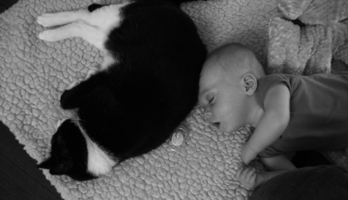 Misha relaxing near a sleeping (and very young) C.