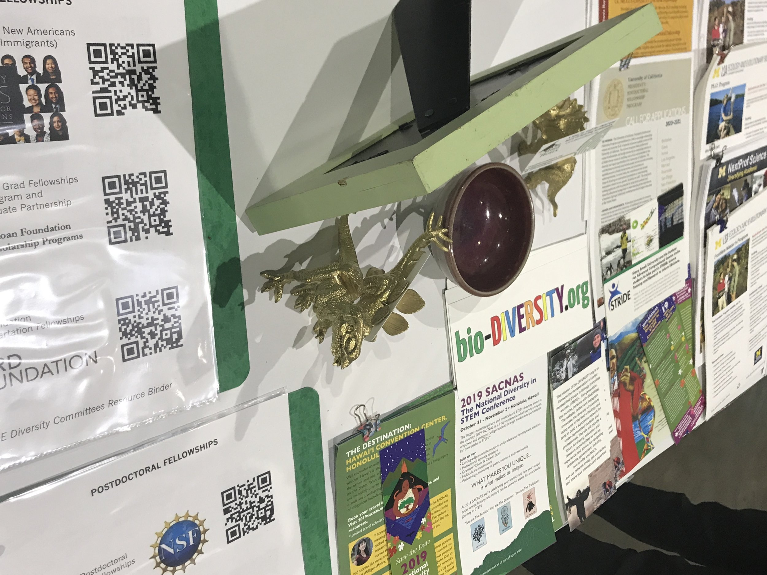 A section of the joint Diversity Booth at the 2019 Evolution Meeting.