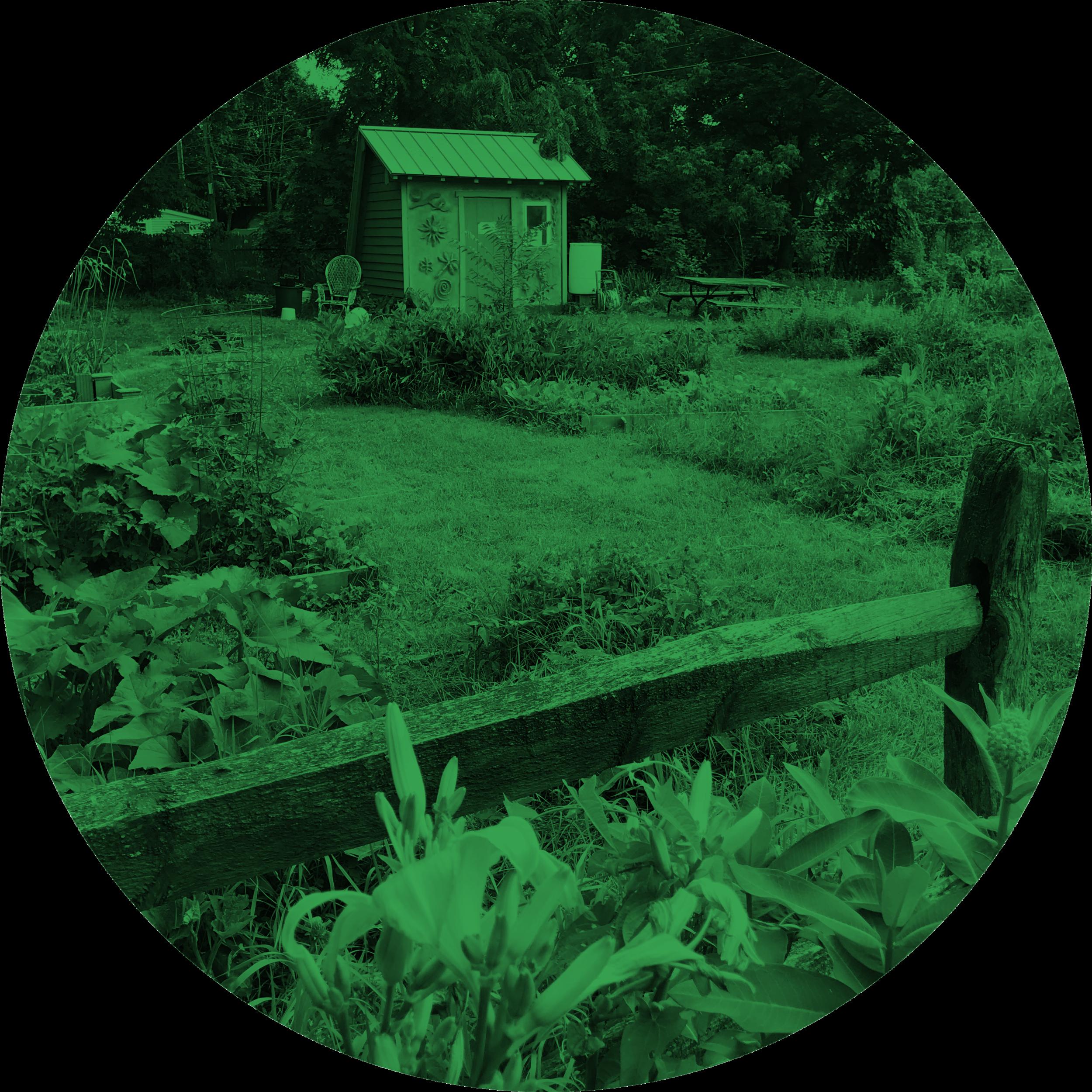 ithaca court garden.png