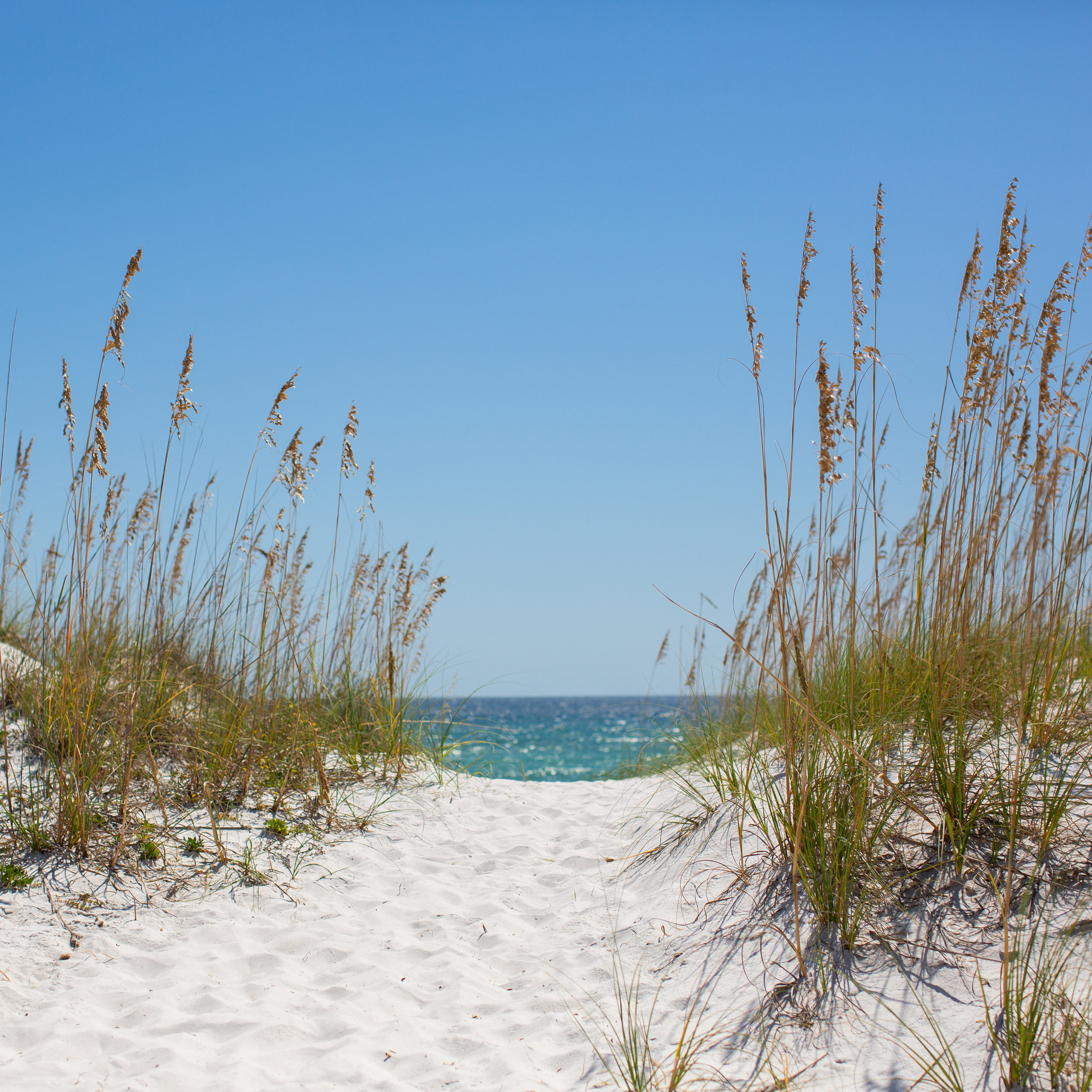 Pensacola Beach - Society for Creative Founders Conference