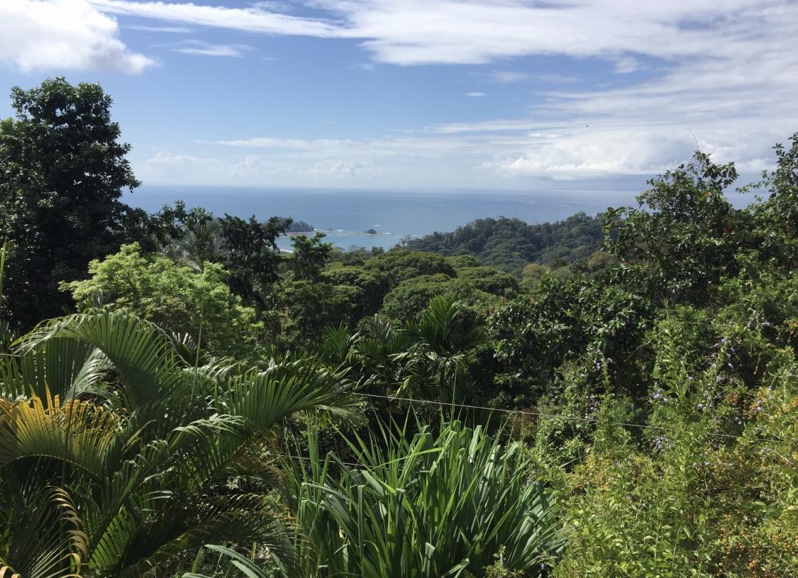 Costa Rica Anaerobico Cordillera Del Fuego -