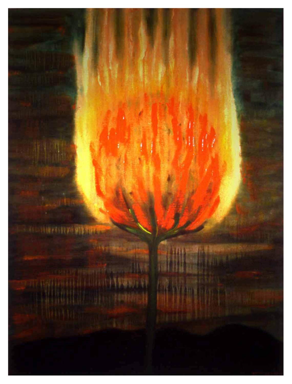 Burning Flower, 1994