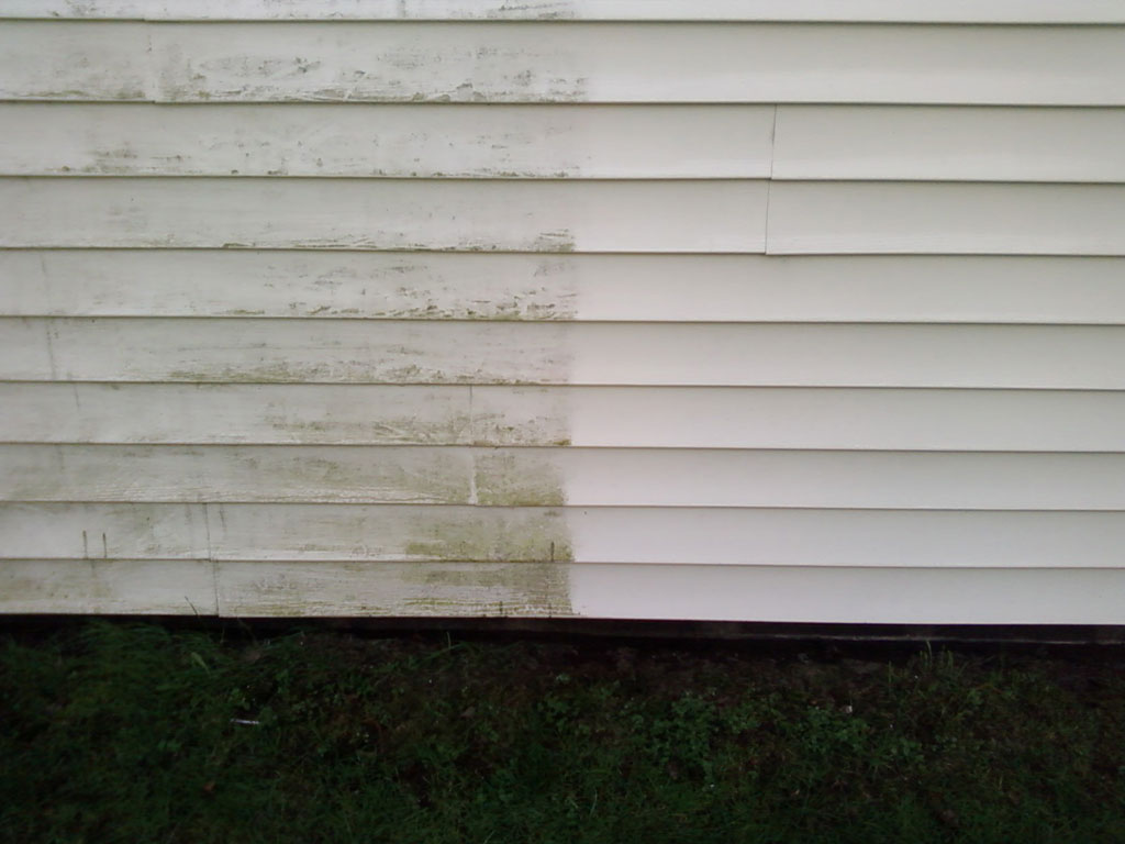 Siding-Cleaning.jpg