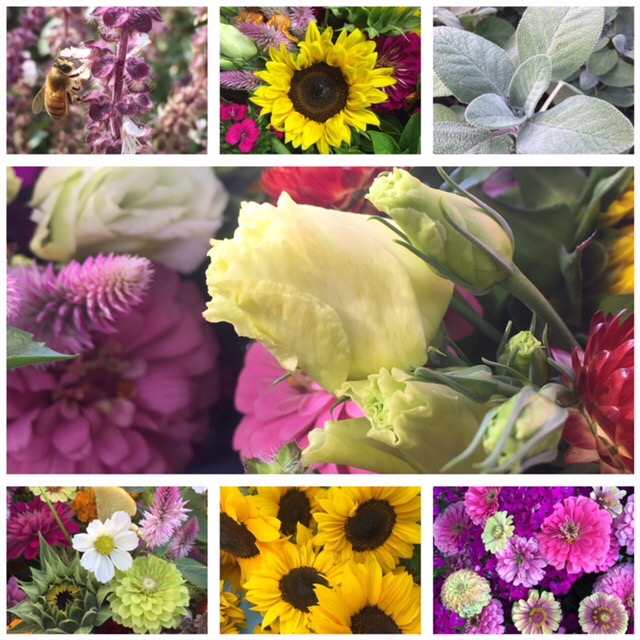 Visit the Historic Newburgh Farmers Market every week of the season to find flowers and more!